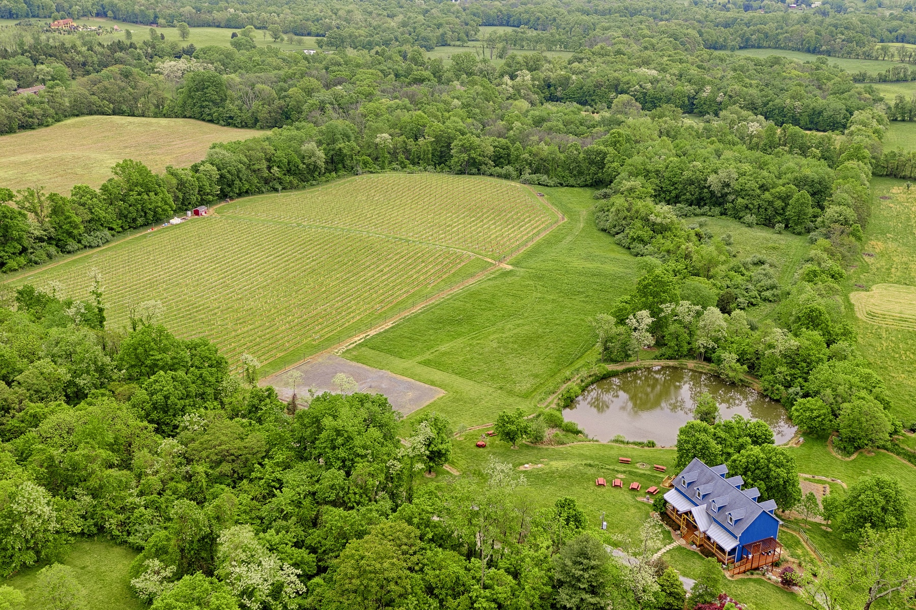 Single Family Home for Sale at Notaviva Vineyard 13274 Sagle Road Purcellville, Virginia 20132 United States