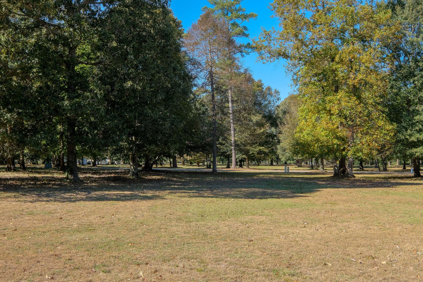 "Land for Active at ""AFFORDABLE CLEARED LOT"" 237 Lake Wood Dr Edenton, North Carolina 27932 United States"