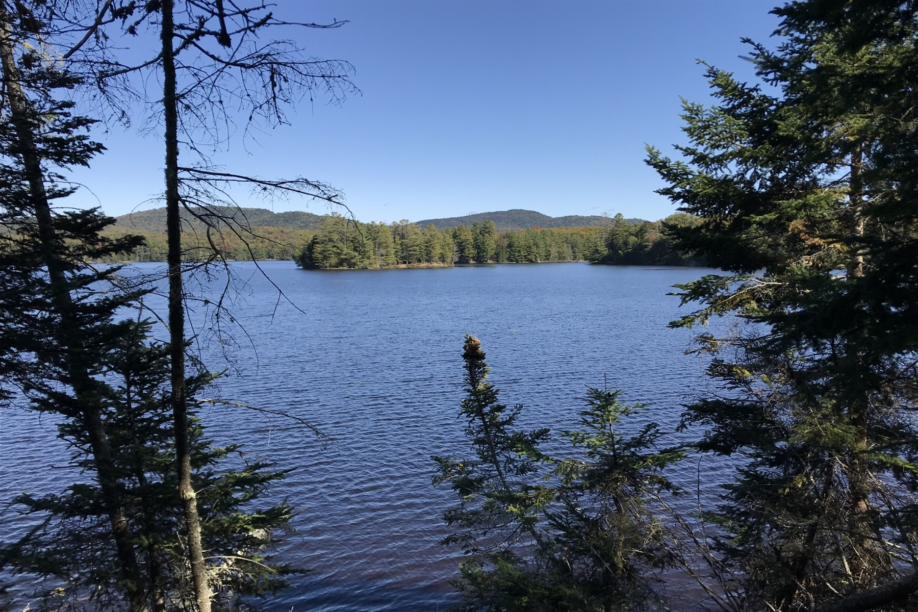 Land for Sale at 1852 Goodnow Flow Road Newcomb, New York 12852 United States