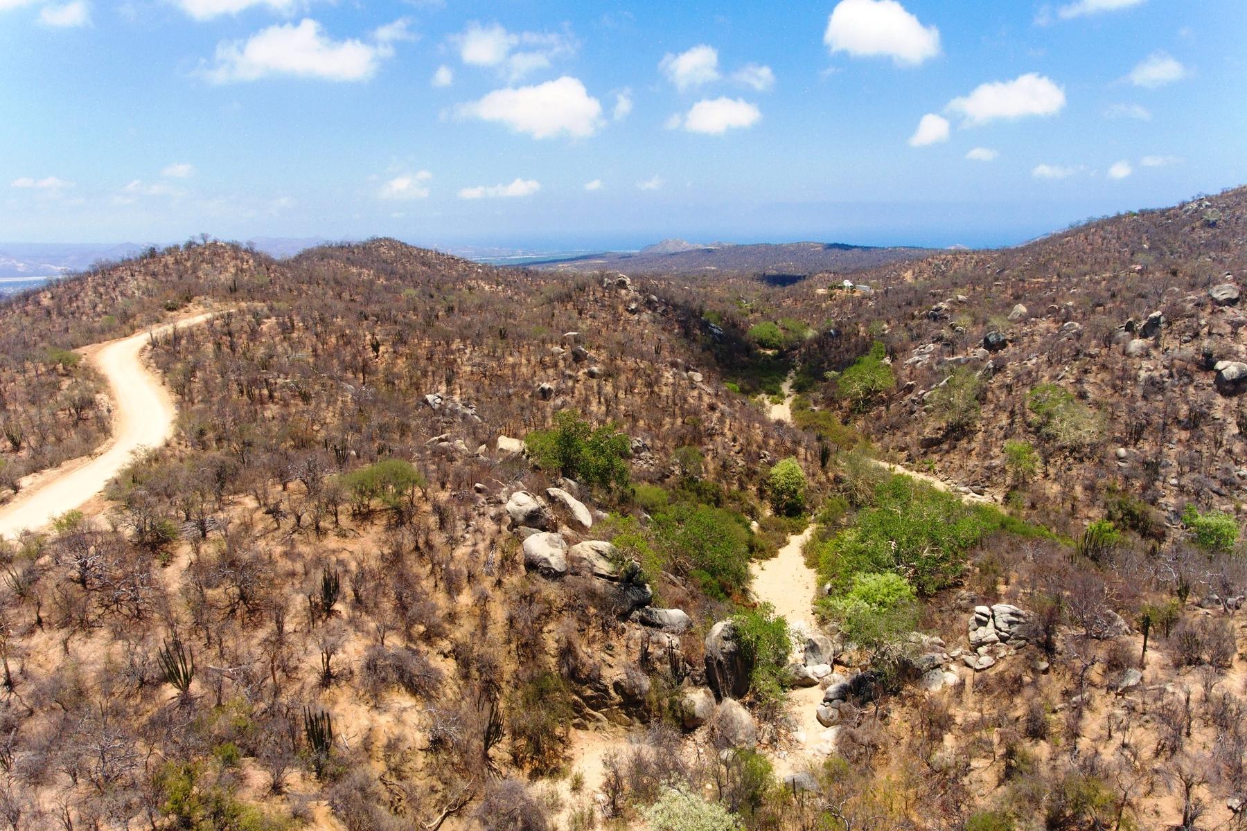 Οικόπεδο για την Πώληση στο Rancho La Soledad San Jose Del Cabo, Baja California Sur Μεξικο