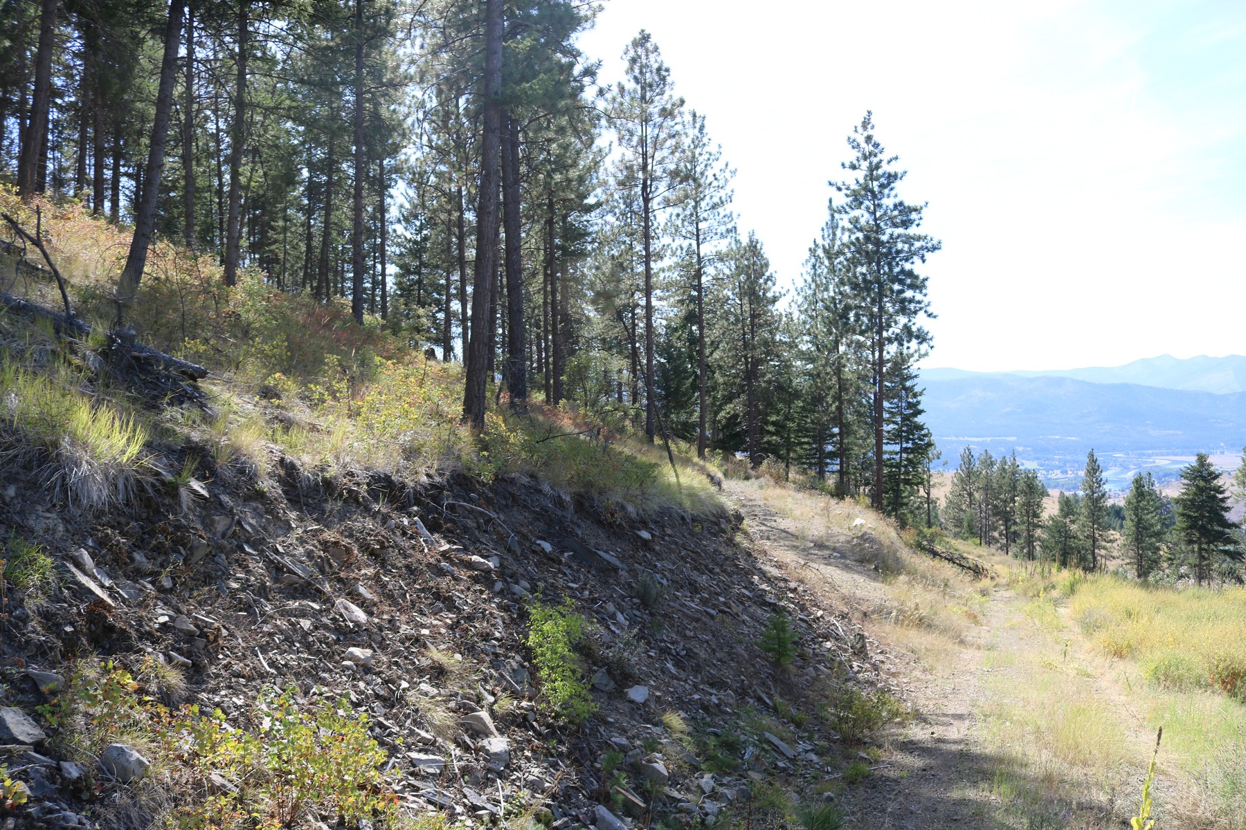 Land for Sale at 4 Deemer Ridge Road Plains, Montana 59859 United States