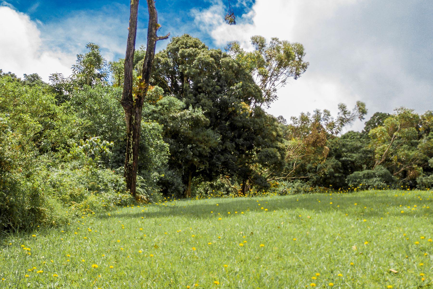 Additional photo for property listing at Bosque Bougavilea Barva, Heredia Costa Rica