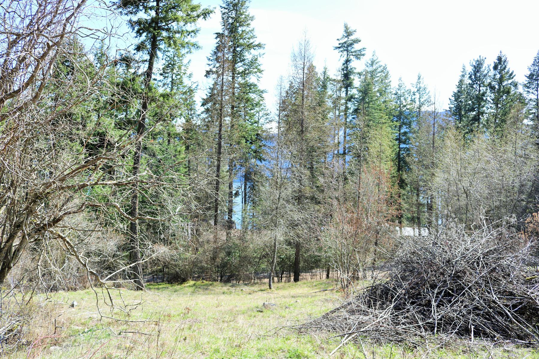 Terreno para Venda às Terrace Dr Lot 25A NKA N Terrace Dr 25A Bayview, Idaho, 83803 Estados Unidos
