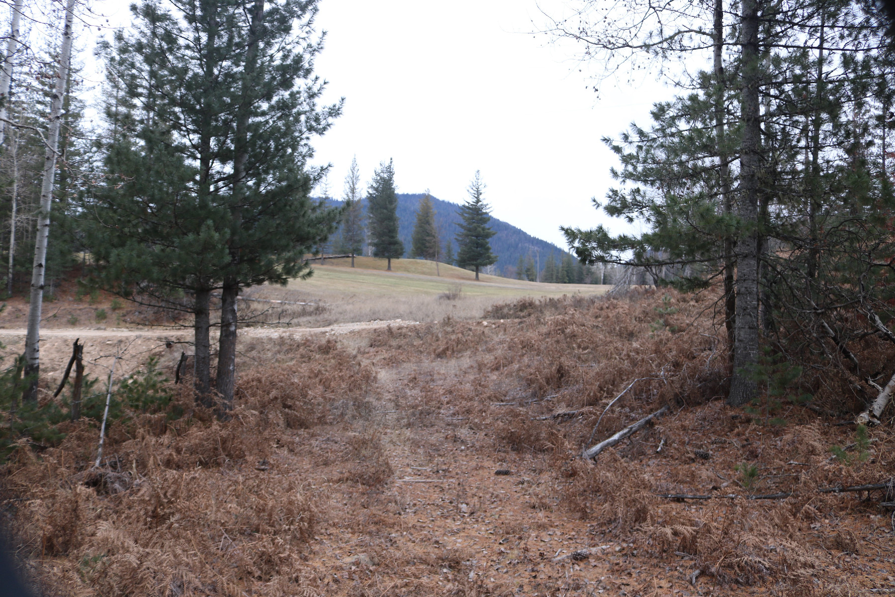 Land for Sale at 10a County Club Road, Kellogg Idaho 10a Country Club Road Kellogg, Idaho 83837 United States