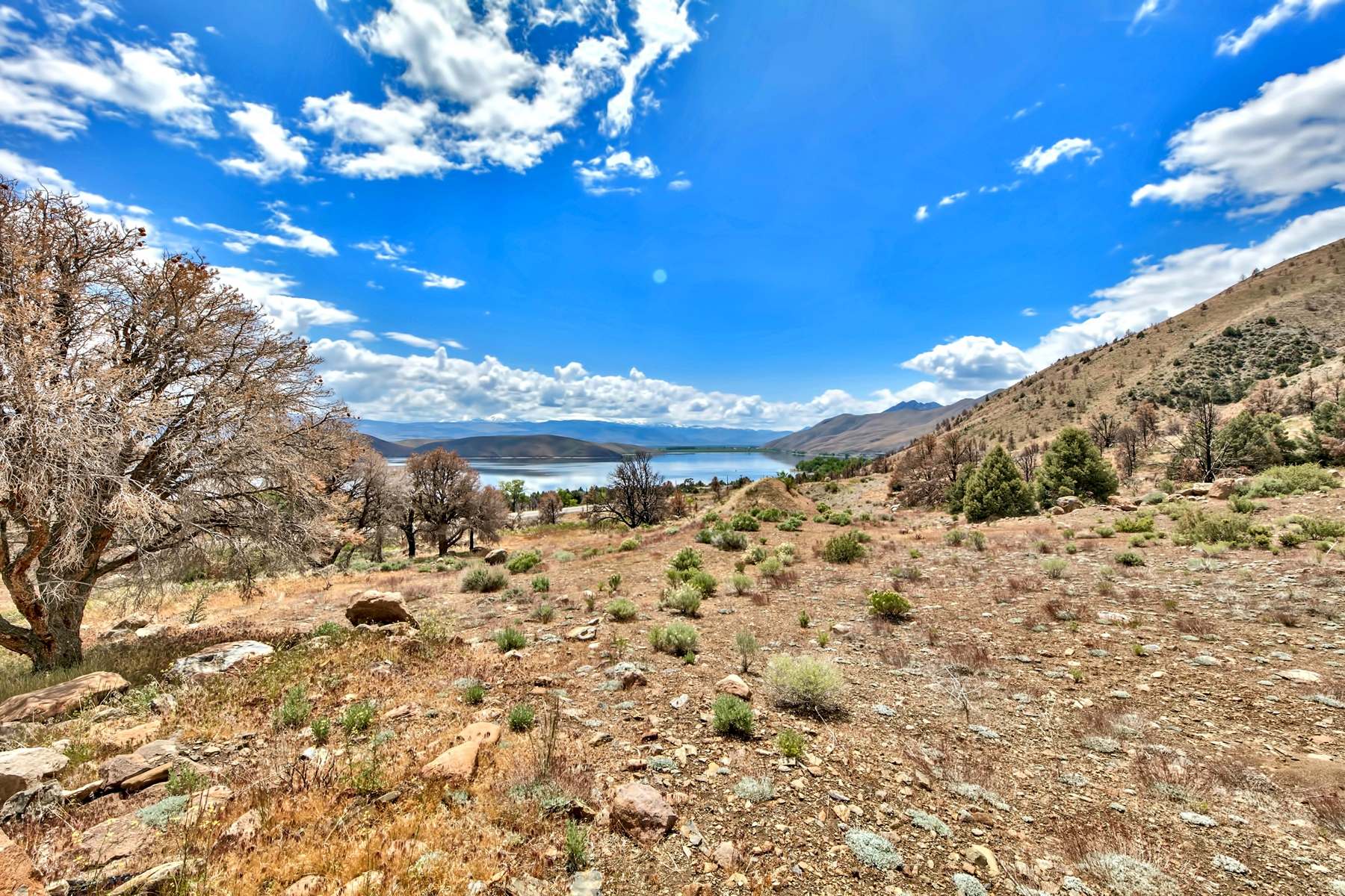 Additional photo for property listing at 2000 South Highway 395, Gardnerville, NV 89410 2000 S. Highway 395 Gardnerville, Nevada 89410 United States