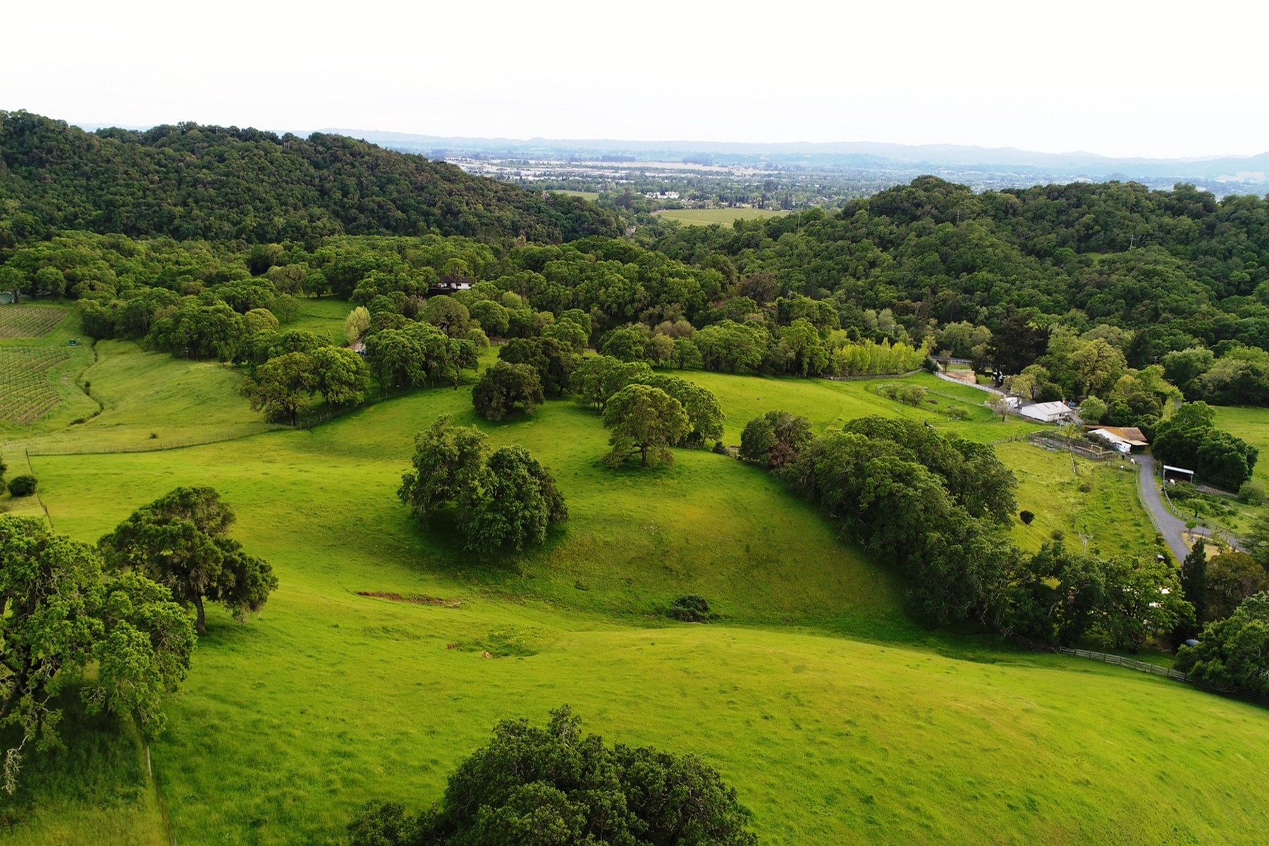 Terreno por un Venta en 8800 Chalk Hill Road Healdsburg, California, 95448 Estados Unidos