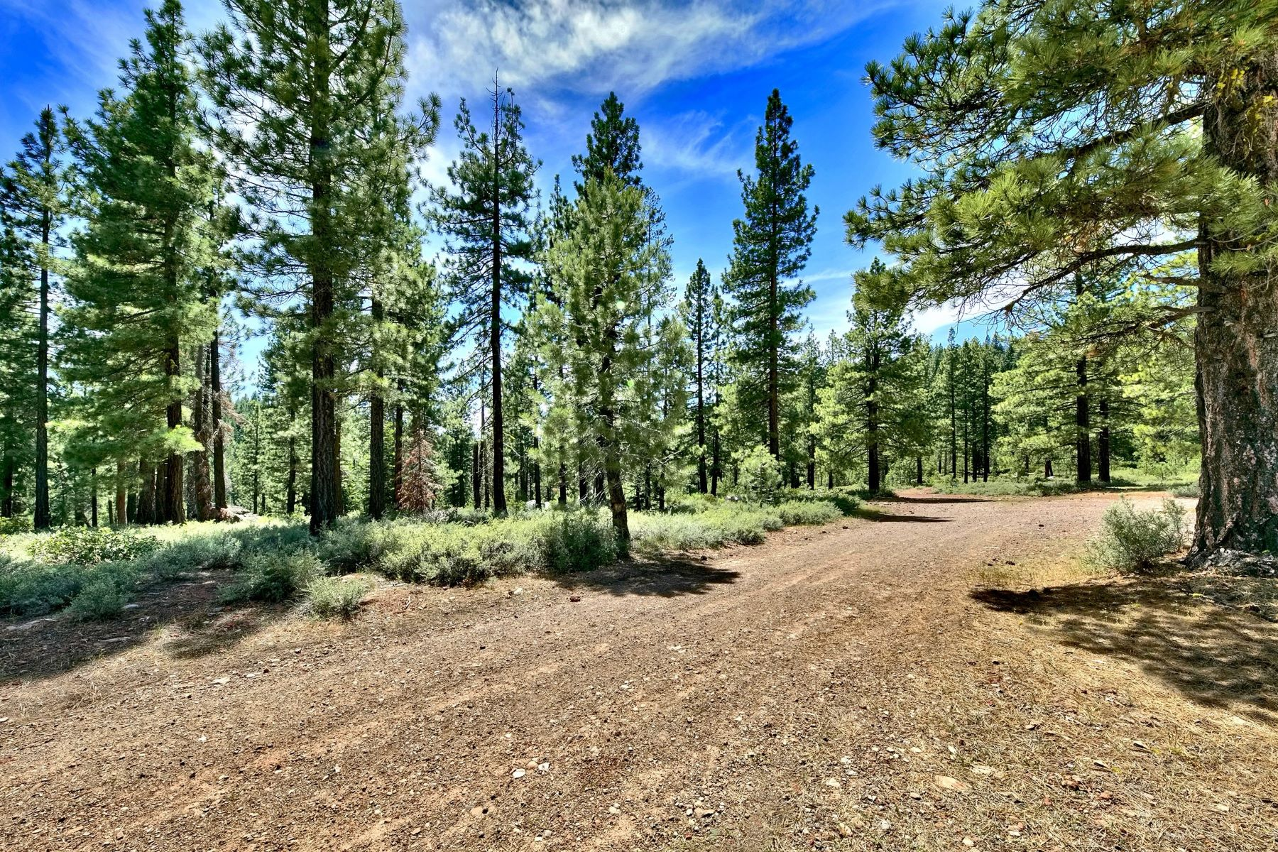Additional photo for property listing at Creek and Mountain Views 000 Bridge Street Truckee, California 96161 United States