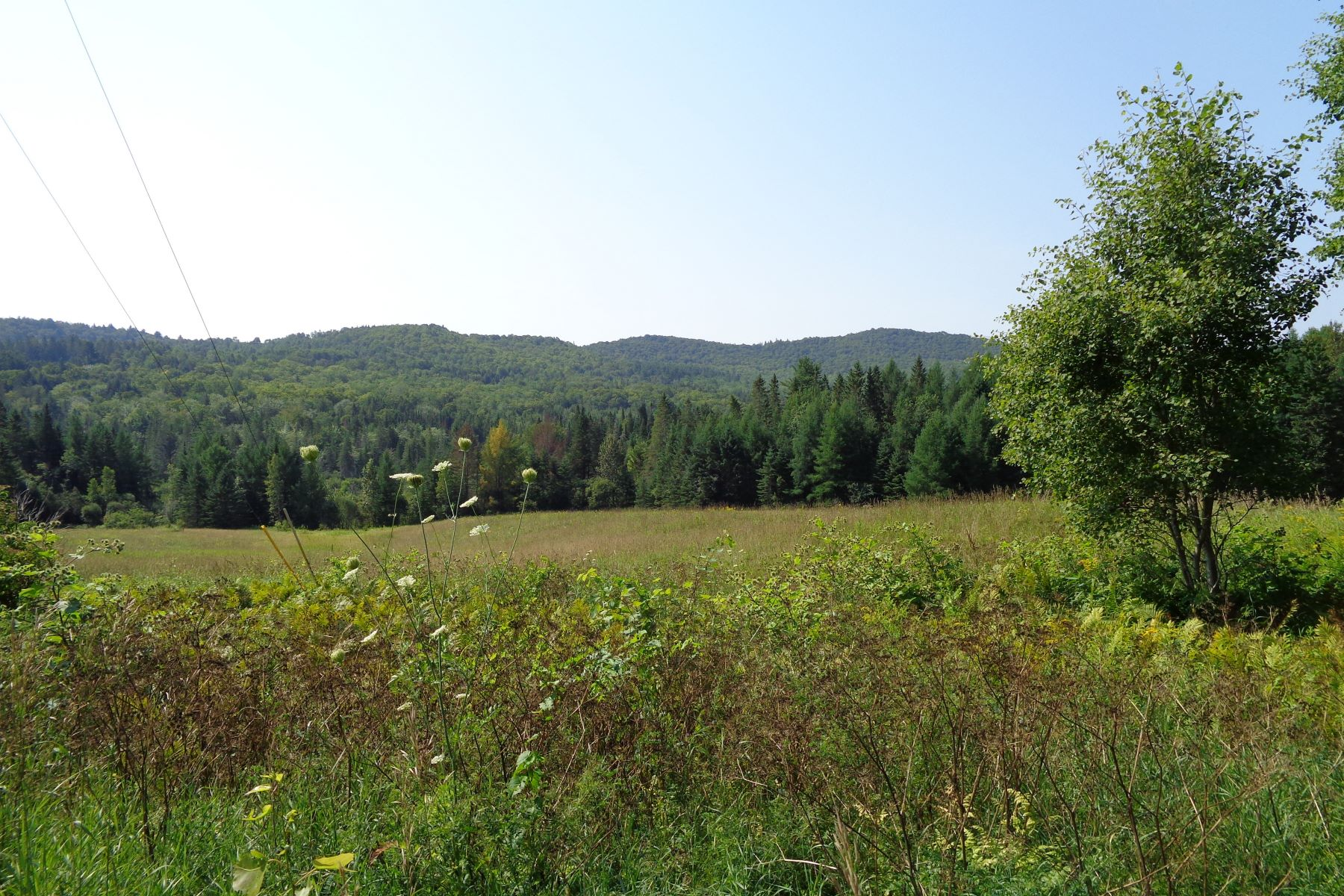Land for Sale at Fifty Plus Acres in Corinth 3891 Chelsea Rd Corinth, Vermont 05039 United States