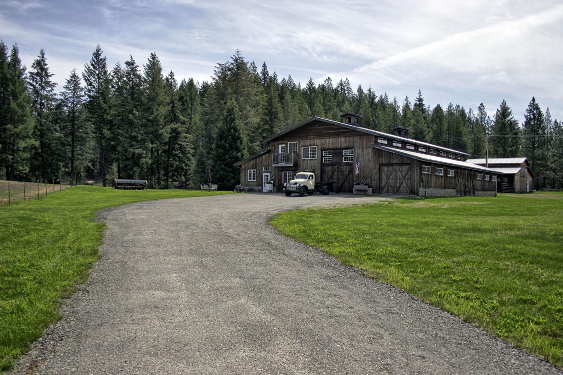 Casa para uma família para Venda às European Shop House 193 Iora Lane Careywood, Idaho, 83809 Estados Unidos