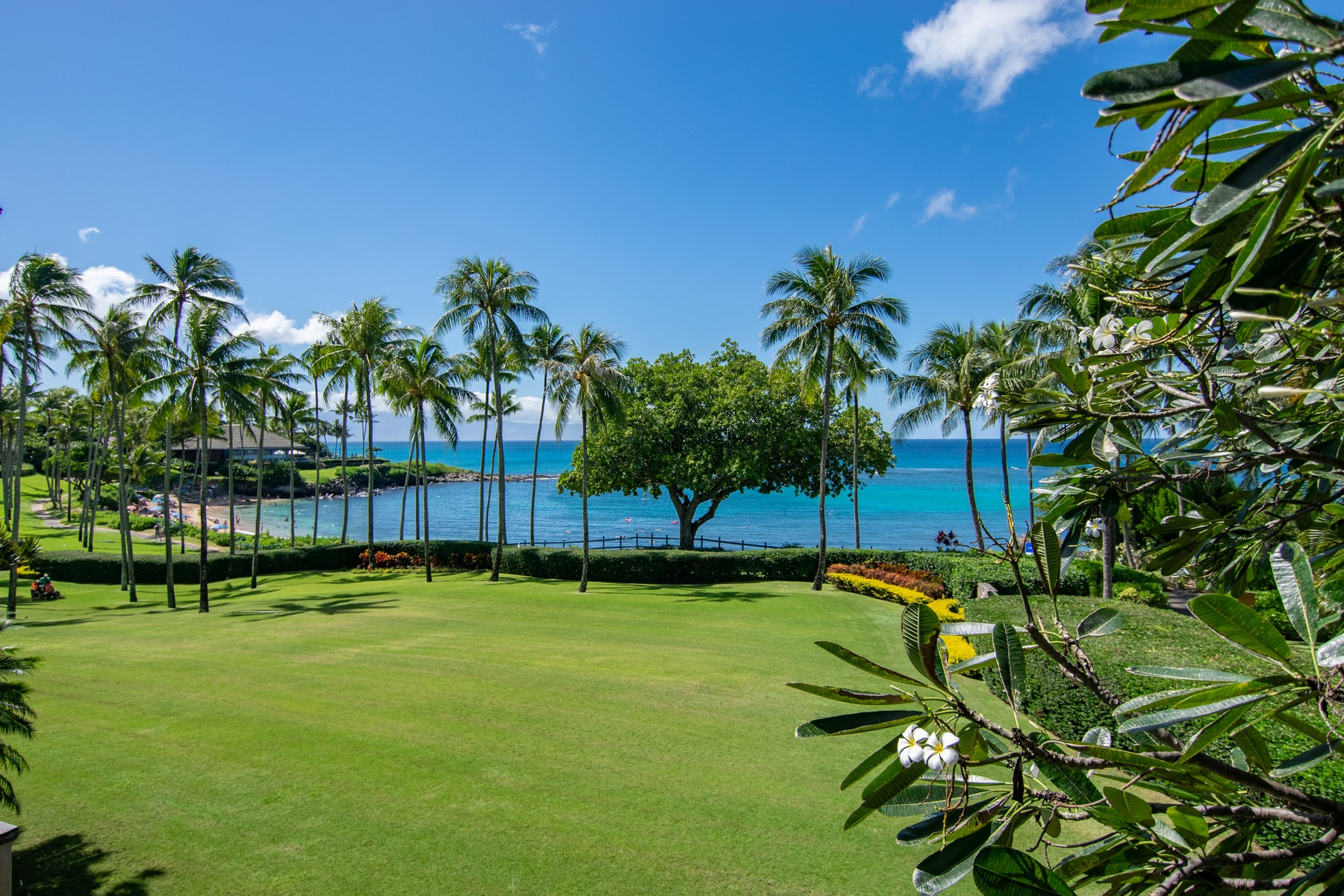 Condominiums για την Πώληση στο Coconut Grove on Kapalua Bay 36 Coconut Grove Lane, Coconut Grove 36, Kapalua, Χαβαη 96761 Ηνωμένες Πολιτείες
