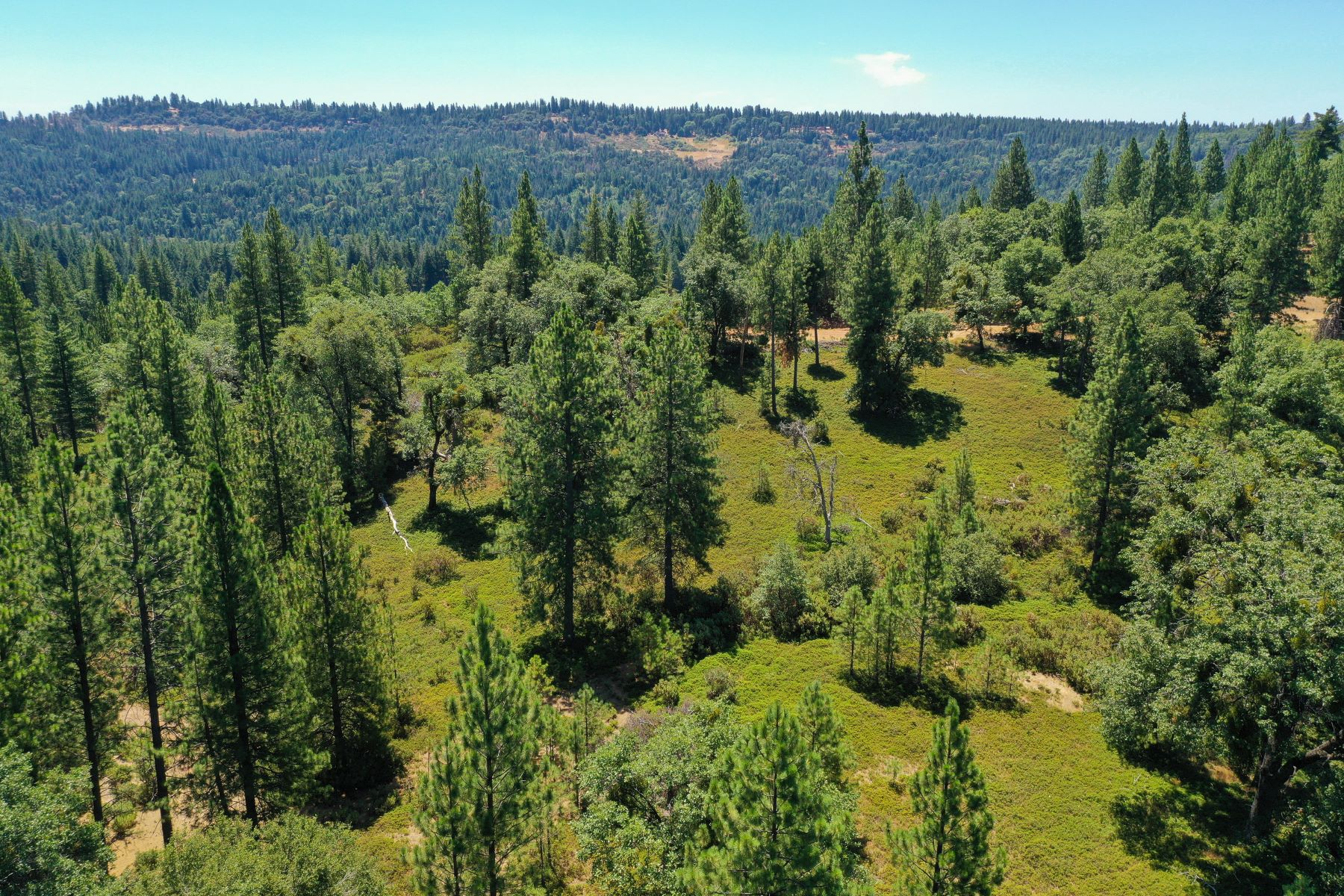 Land for Active at Perfect For Vacation/Retirement Or Live Year-Round 17050 Alicia Drive Pioneer, California 95666 United States