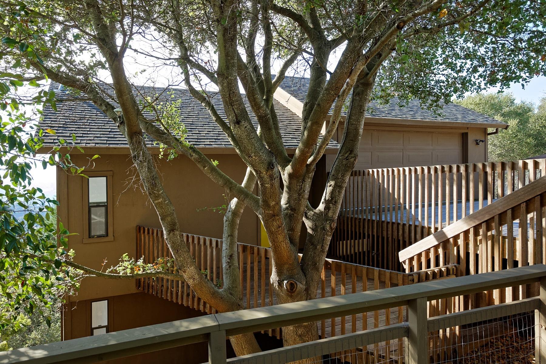 Maison unifamiliale pour l Vente à Multi-Level Contemporary 1106 Besito Avenue Berkeley, Californie 94705 États-Unis