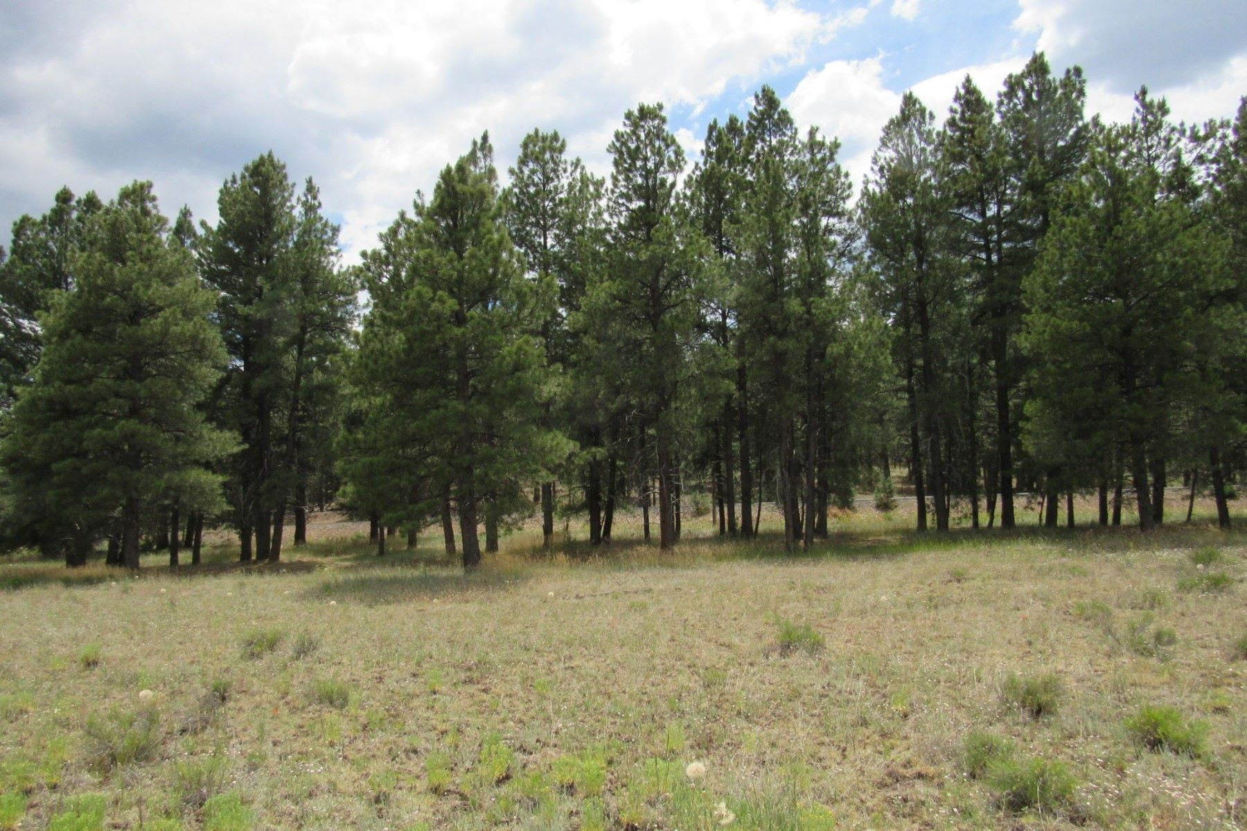 Land for Sale at Williams Rural East 737 N Cool Pines Rd Williams, Arizona 86046 United States