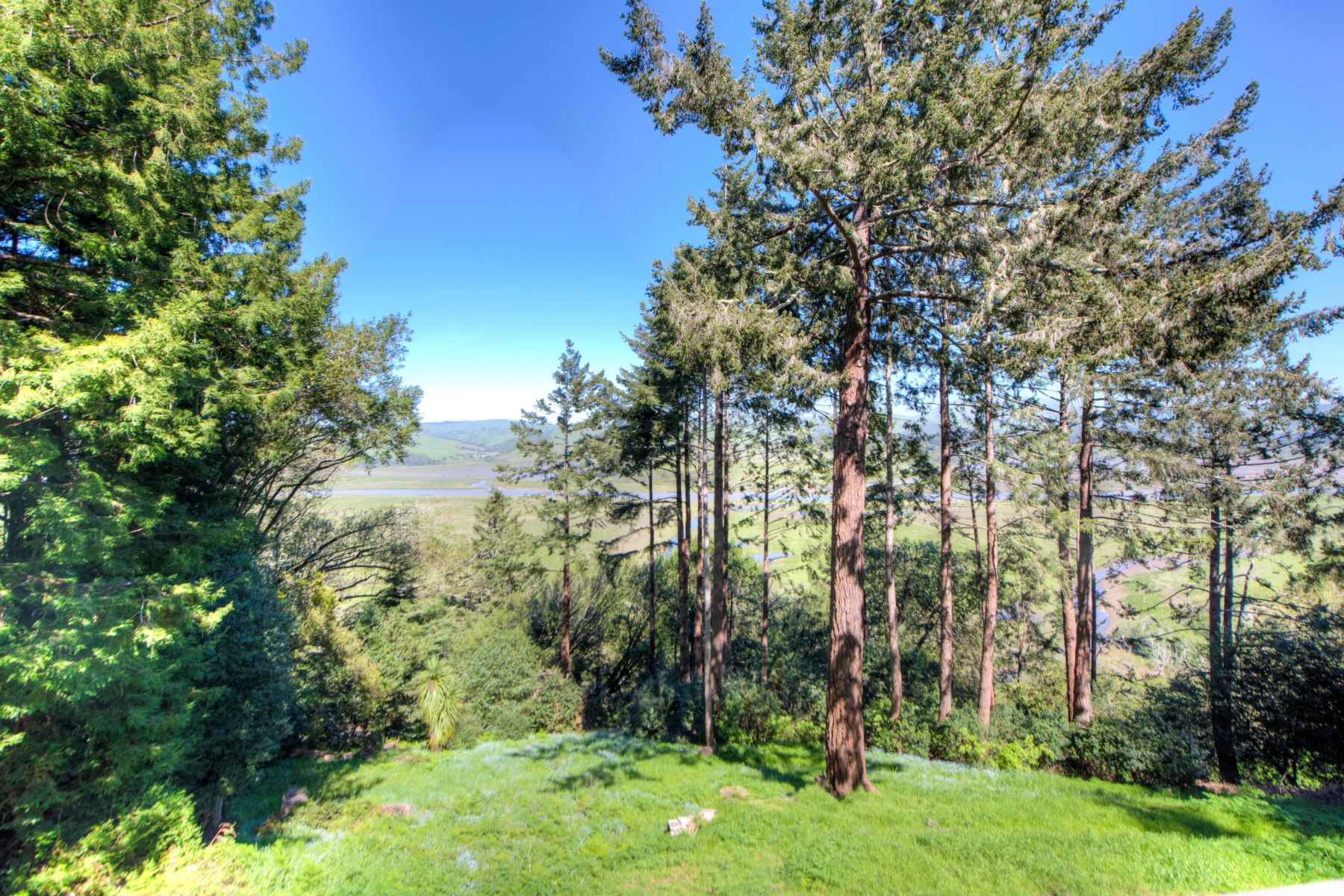 Additional photo for property listing at Vintage Inverness Home on 1.49 Acres, Stunning Water Views 15 Drakes View Drive Inverness, California 94937 Hoa Kỳ