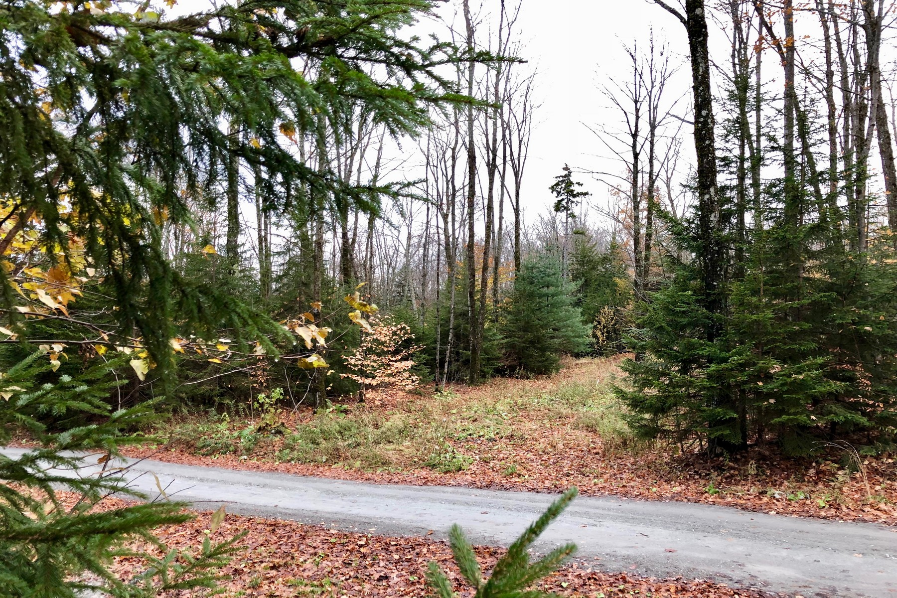 Land for Sale at 280 Woods Road, Northfield 280 Woods Rd Northfield, Vermont 05663 United States