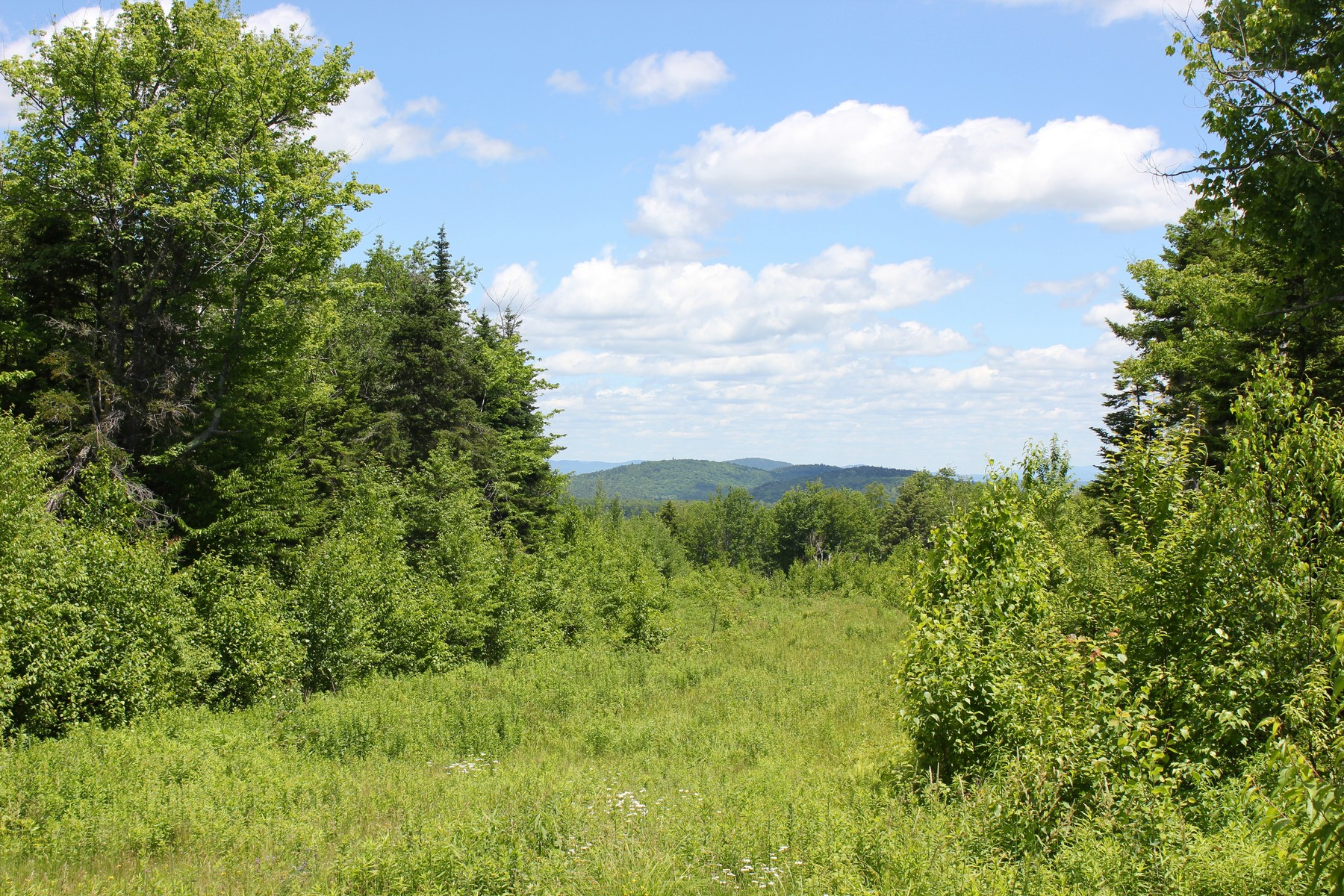 Land for Sale at Long Range Views & Privacy Hemlock Hill Drive Ludlow, Vermont 05149 United States