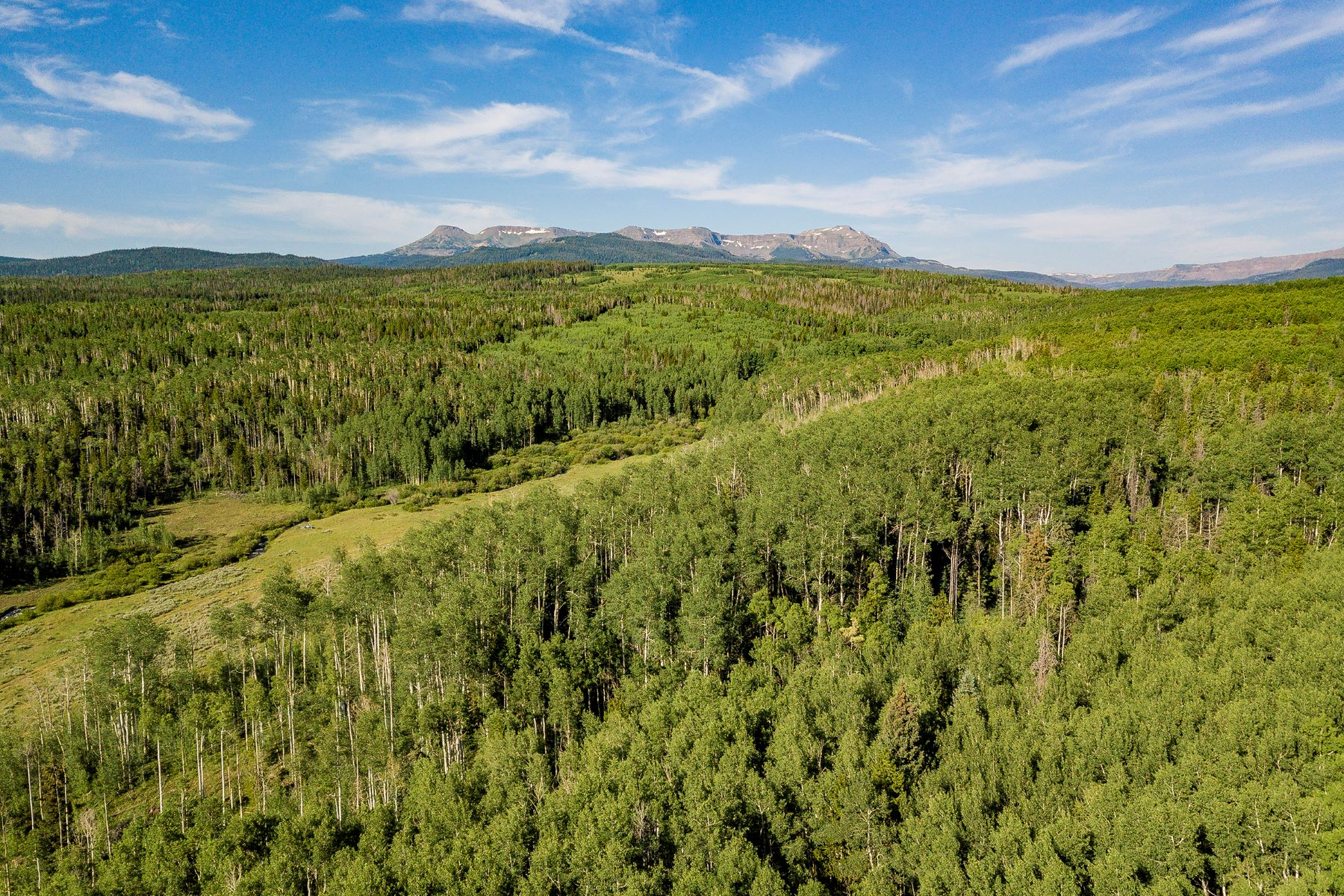 Land for Sale at Five Pine Mesa Ranch 24655 County Road 3B, Yampa, Colorado 80483 United States