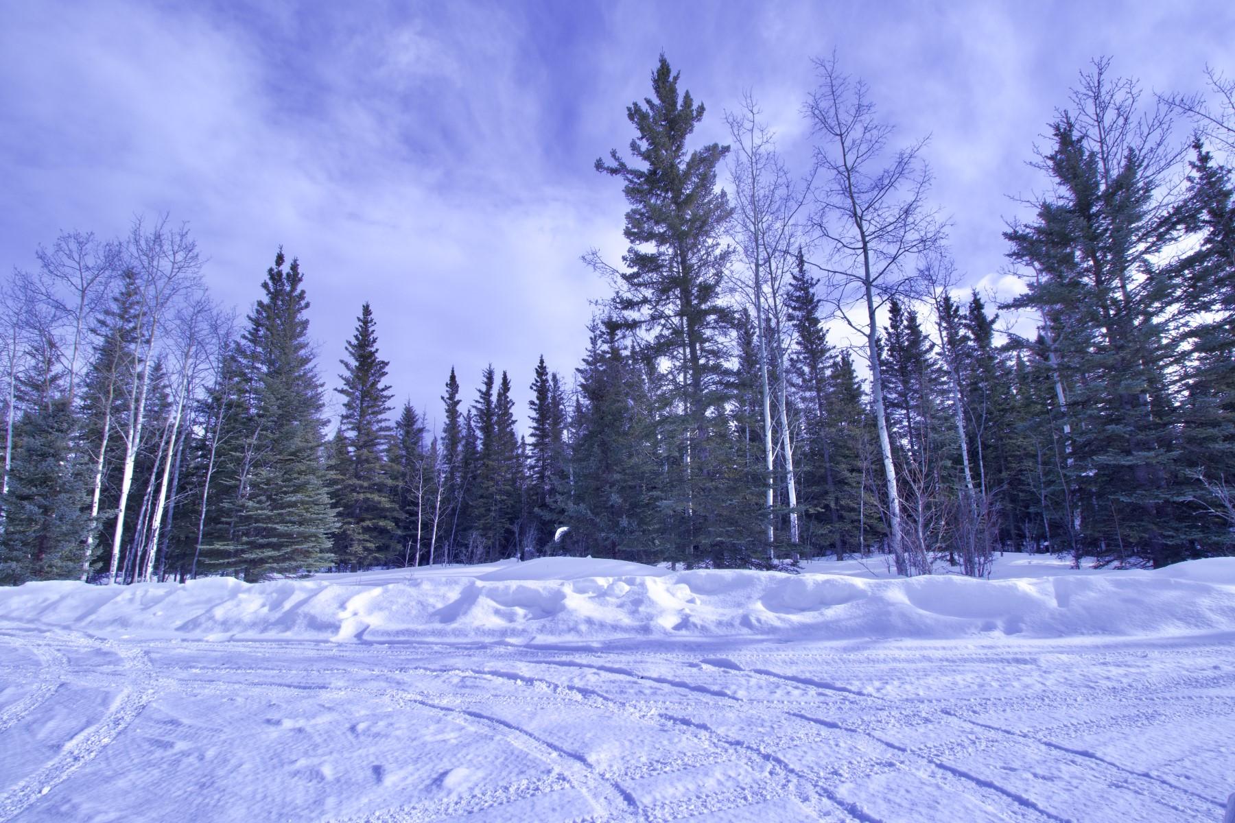 Land for Sale at Delta Junction, Alaska 99737 United States