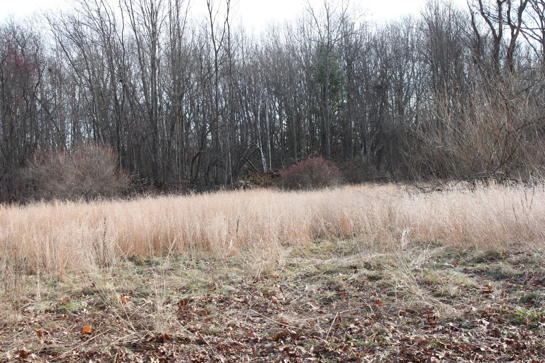 土地,用地 为 销售 在 Twenty Six Lot Subdivision 42 - 58 Mt Pleasant Street 斯特伯鲁, 马萨诸塞州 01581 美国