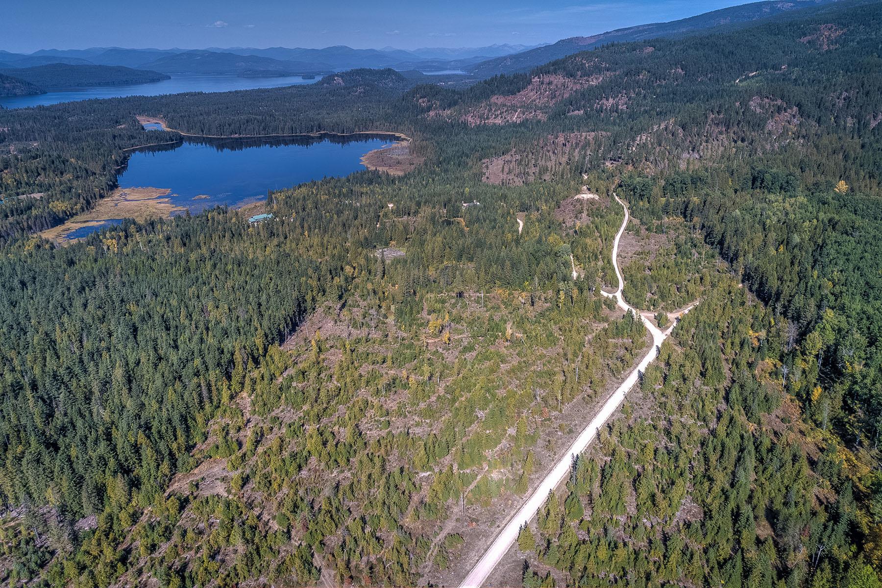 Terreno por un Venta en BUSHWOOD ESTATES Lot 5 1585 Lost Creek Rd Coolin, Idaho, 83821 Estados Unidos