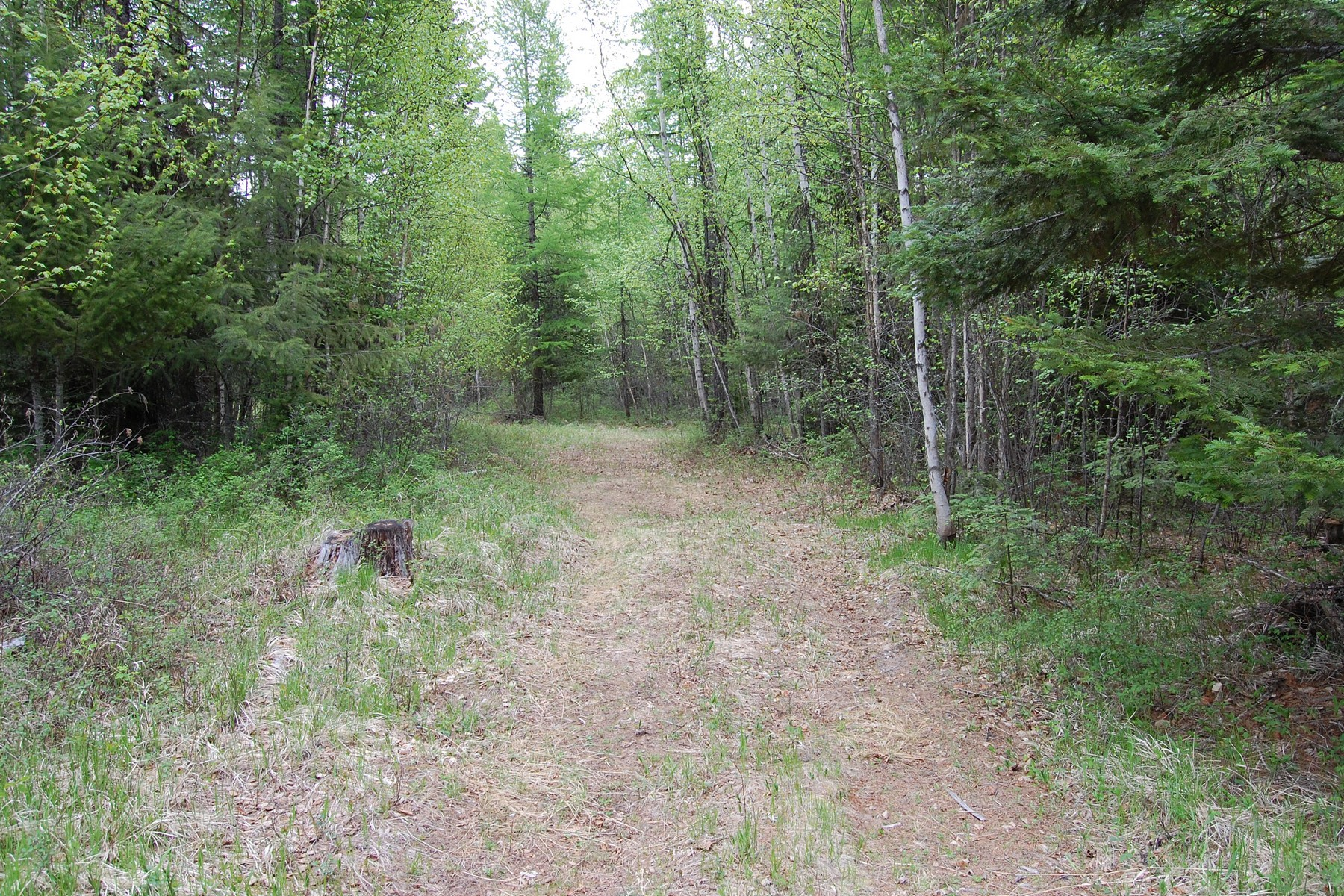 Land for Sale at nhn Big Hawk Drive, Lot 10, Bigfork, MT 59911 Lot 10 Wapiti Dr Lot 10 Bigfork, Montana 59911 United States