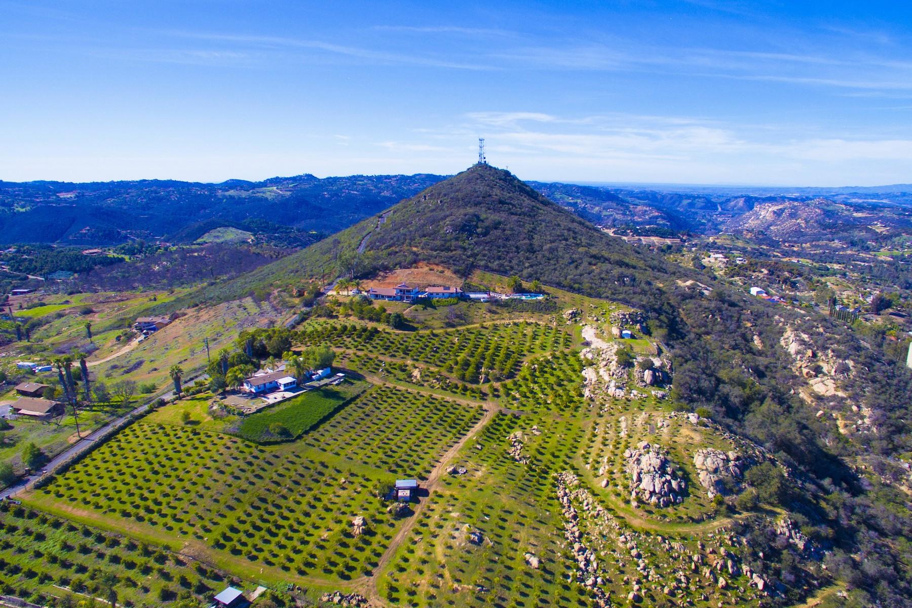Single Family Homes for Sale at Sierra Rojo Ln 29507 Sierra Rojo Lane Valley Center, California 92082 United States