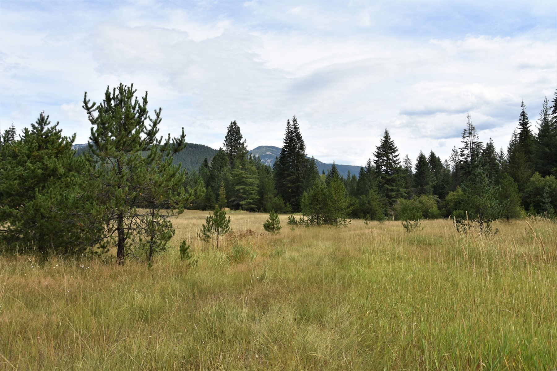 Land for Active at Off Grid Clark Fork Acreage 2755 USFS Rd 2295 Clark Fork, Idaho 83811 United States