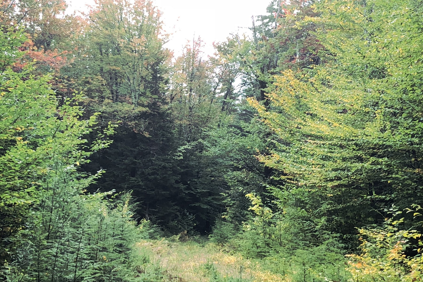 Land for Sale at Lot B Stratton Arlington Road, Stratton Lot B Stratton Arlington Rd Stratton, Vermont 05360 United States
