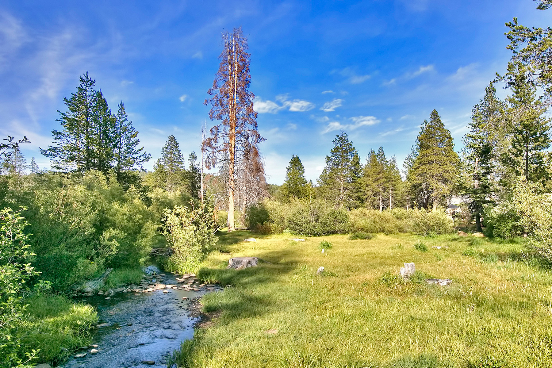 Additional photo for property listing at 14225 Herringbone Way, Truckee, CA 14225 Herringbone Way 特拉基, 加利福尼亚州 96161 美国