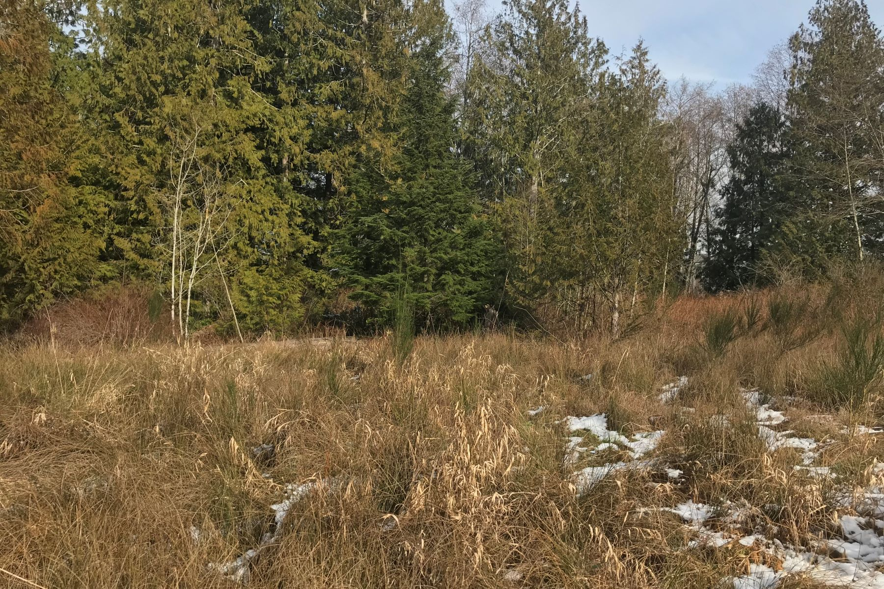 Land for Sale at Port Orchard Opportunity SW Sedgwick Road Port Orchard, Washington 98367 United States