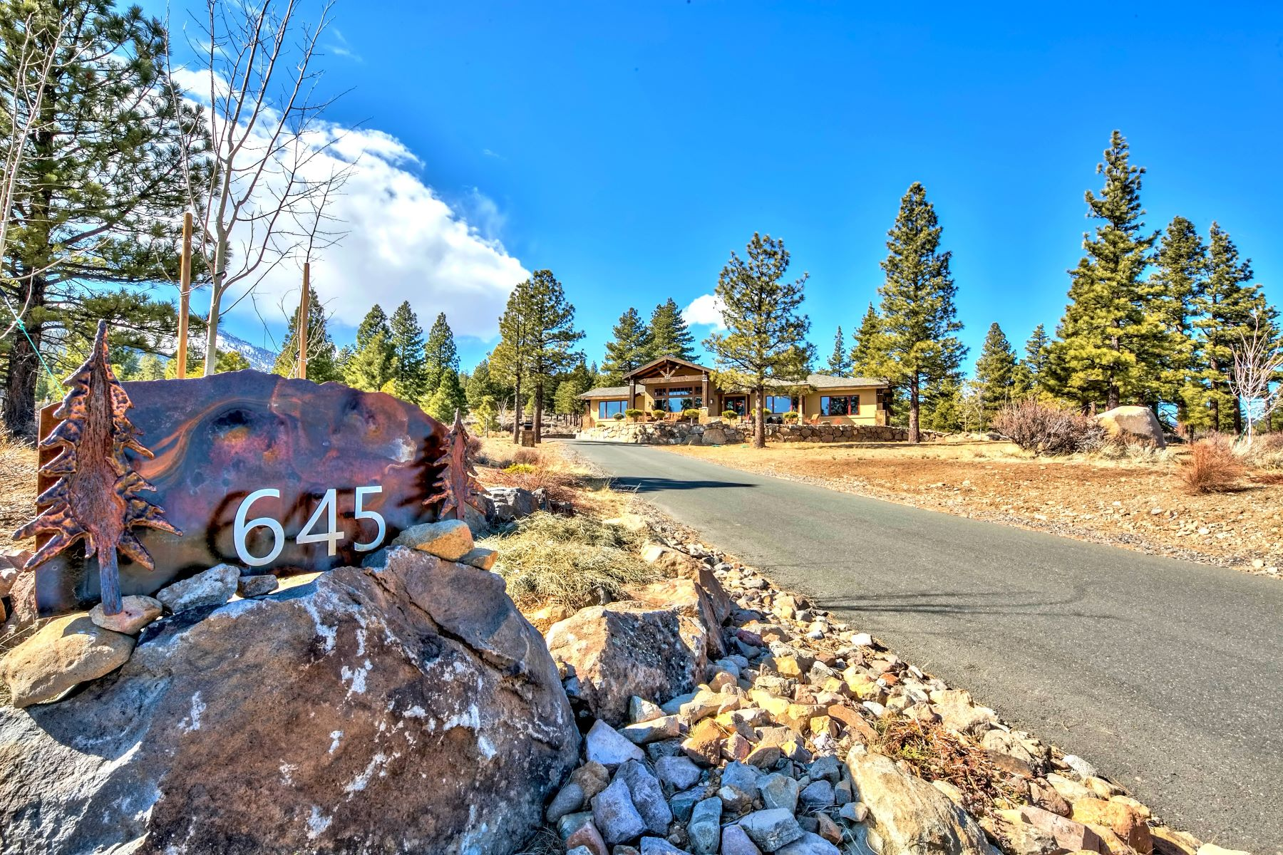 Additional photo for property listing at 645 Sand Cherry Ct, Reno 89511 645 Sand Cherry Court 里诺, 内华达州 89511 美国