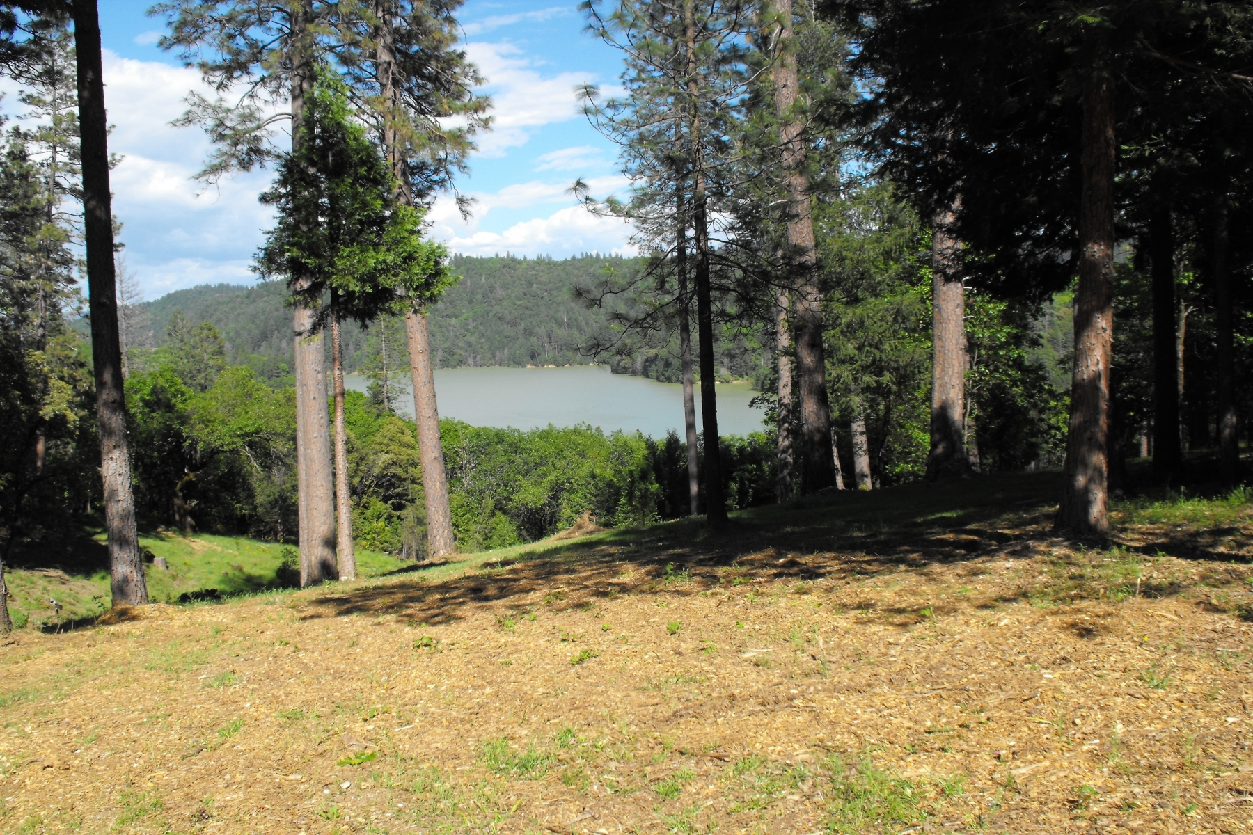 Additional photo for property listing at 19214 Country Lane, Grass Valley, CA 19214 Country Lane Grass Valley, California 95945 United States