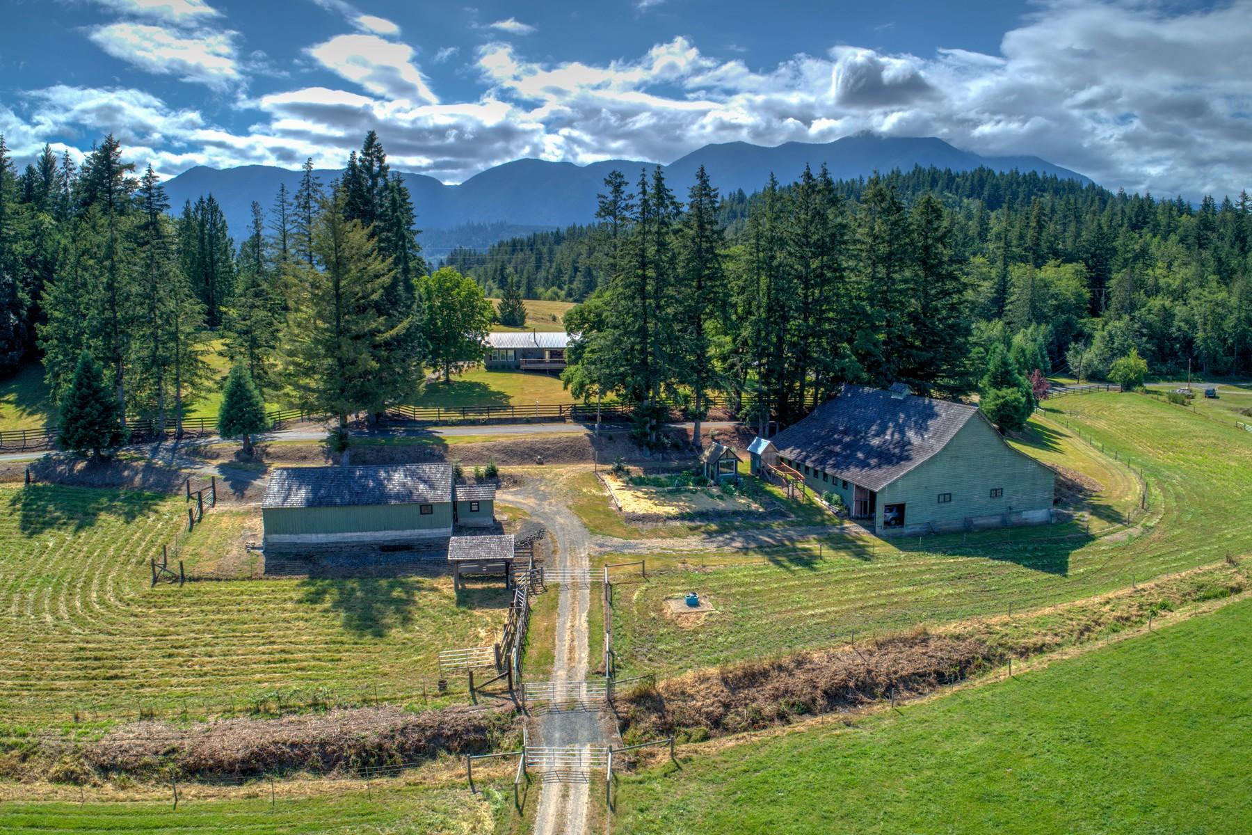 Single Family Homes por un Venta en 190 Mcinnes Rd, Quilcene 190 McInnes Rd Quilcene, Washington 98376 Estados Unidos