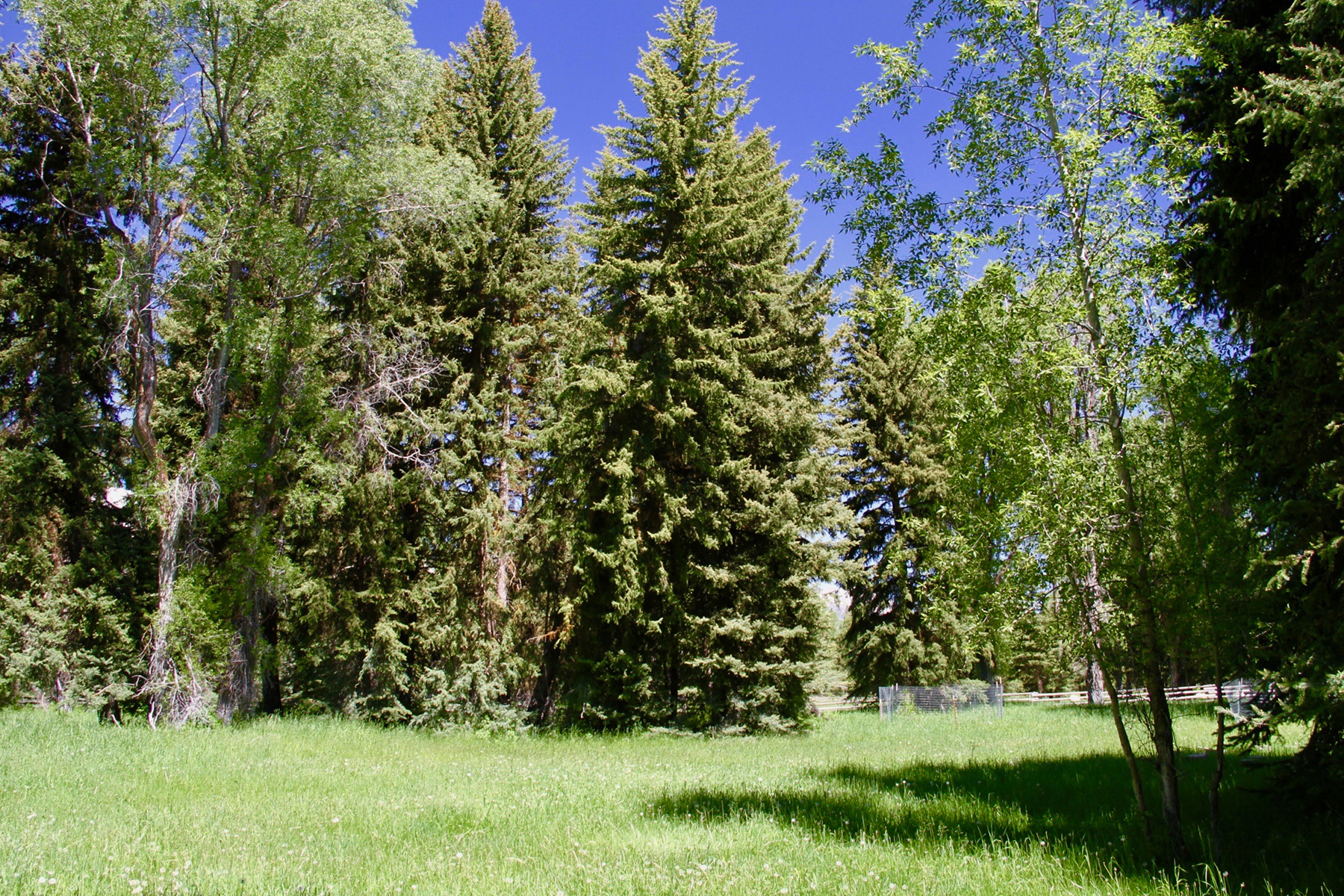 Additional photo for property listing at  Jackson, Wyoming 83002 États-Unis