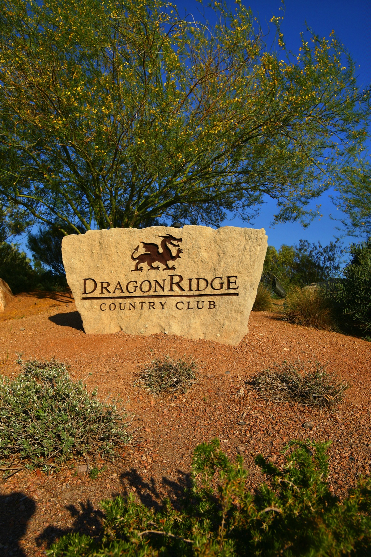 Additional photo for property listing at 780 Dragon Ridge Dr  Henderson, Nevada 89012 United States