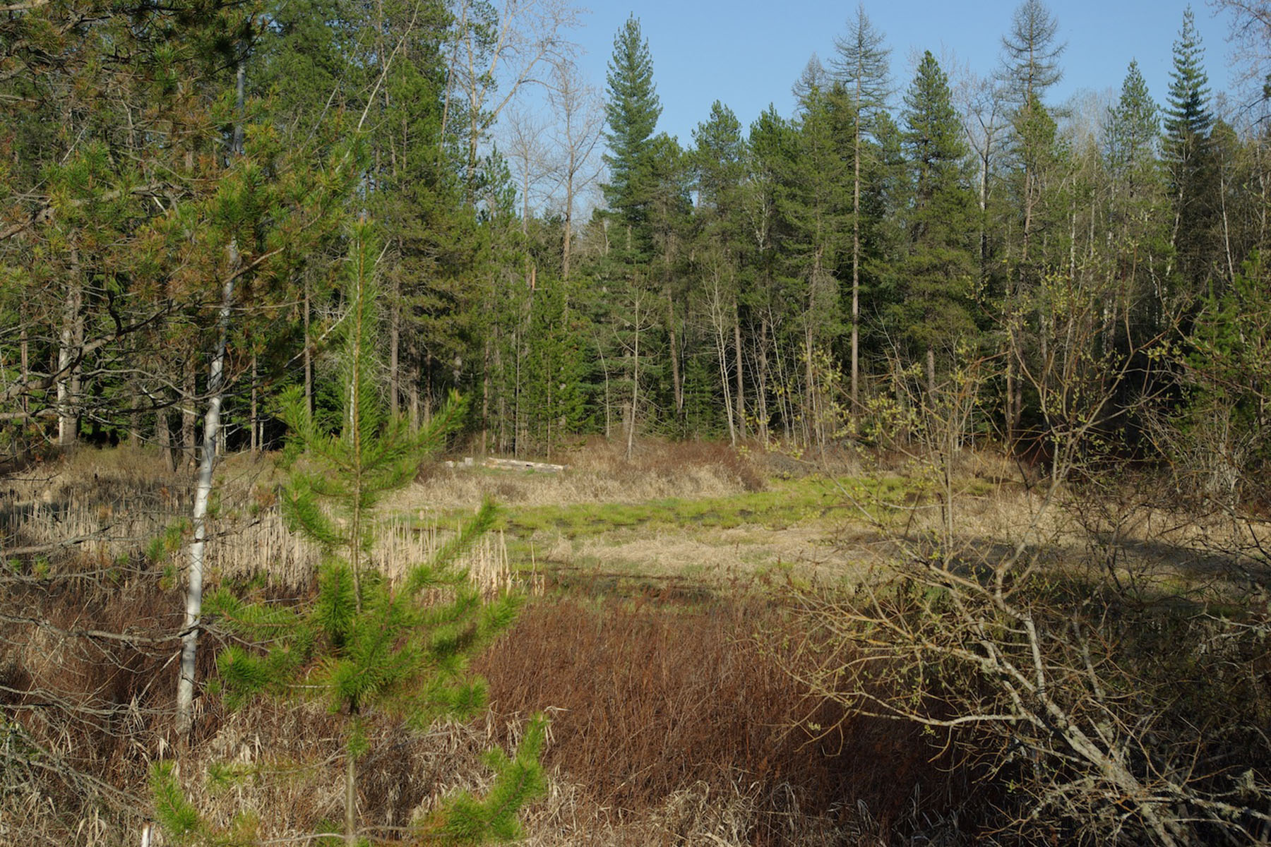 Additional photo for property listing at Exquisite Pend Oreille Riverfront Lot Lot 1 Blk 1 Camas Dr Priest River, Idaho 83856 United States