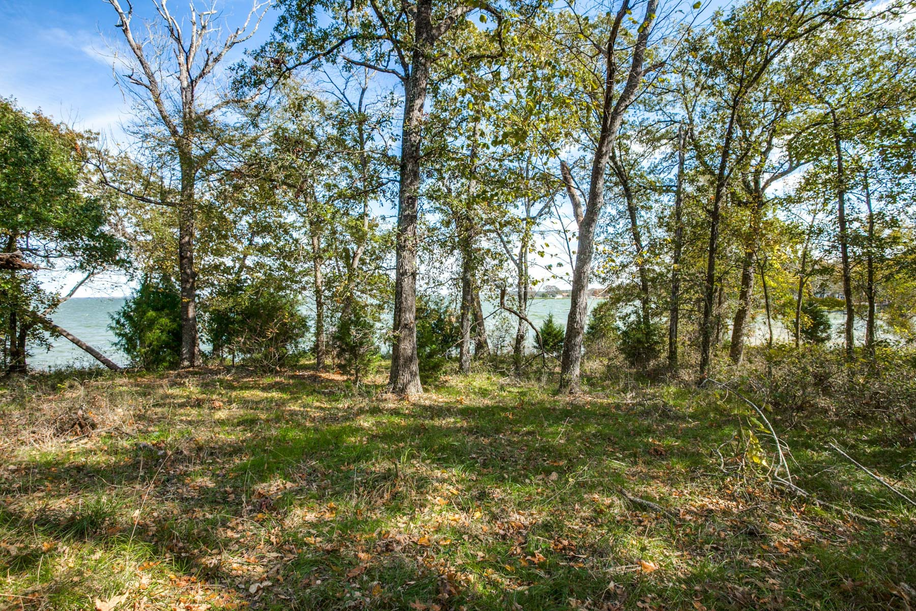 Land for Active at Waterfront acreage on Richland Chambers Lake 000 Bull Run SQ Streetman, Texas 75859 United States