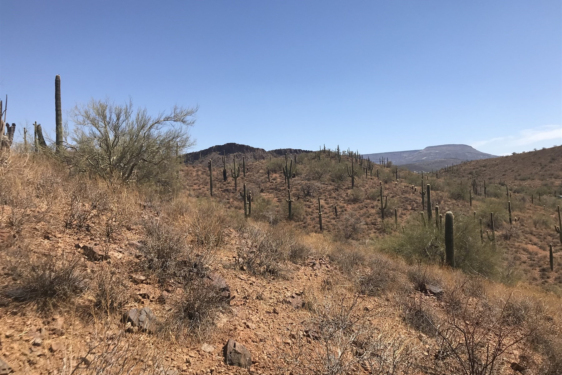 Land for Active at Beautiful 1.46 Acre Parcel With Panoramic Views 40XXX N New River Rd New River, Arizona 85087 United States