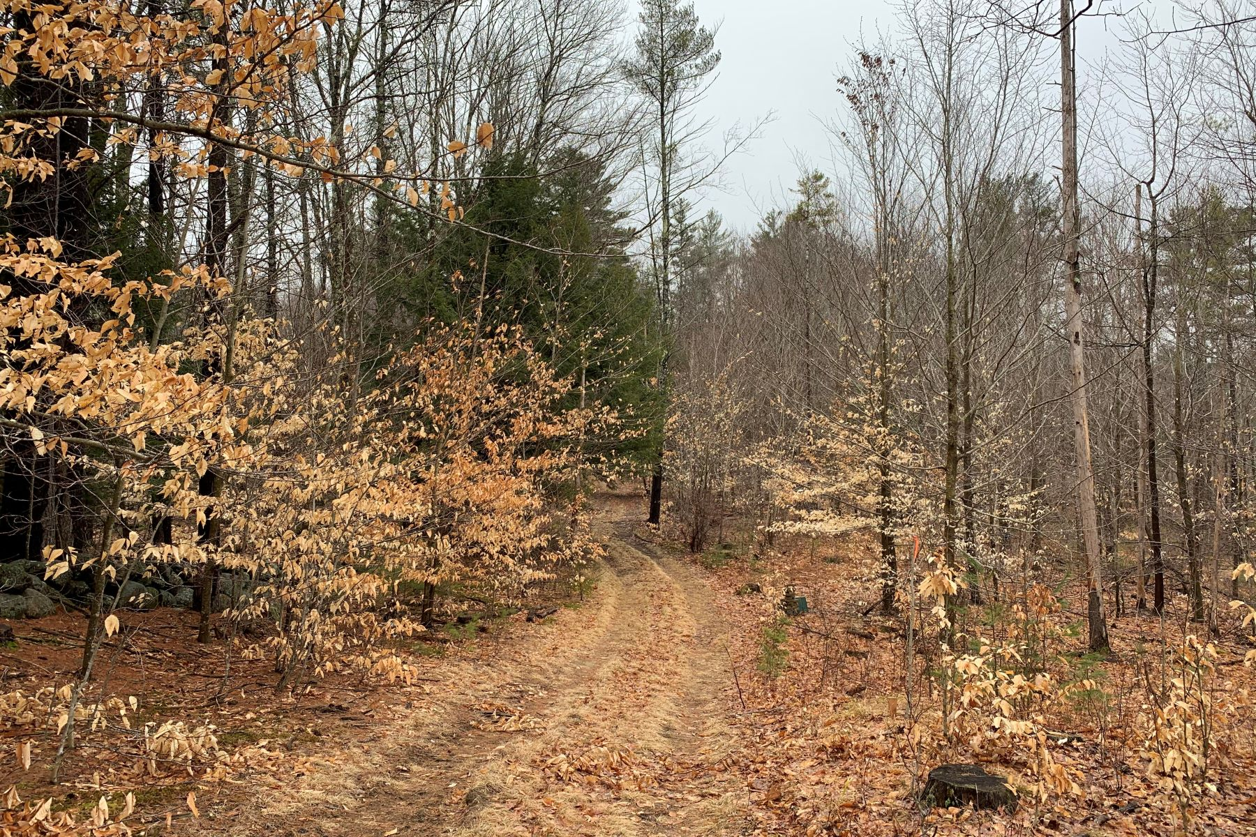 Land for Sale at 562 Old Greenfield Road Peterborough, New Hampshire 03458 United States