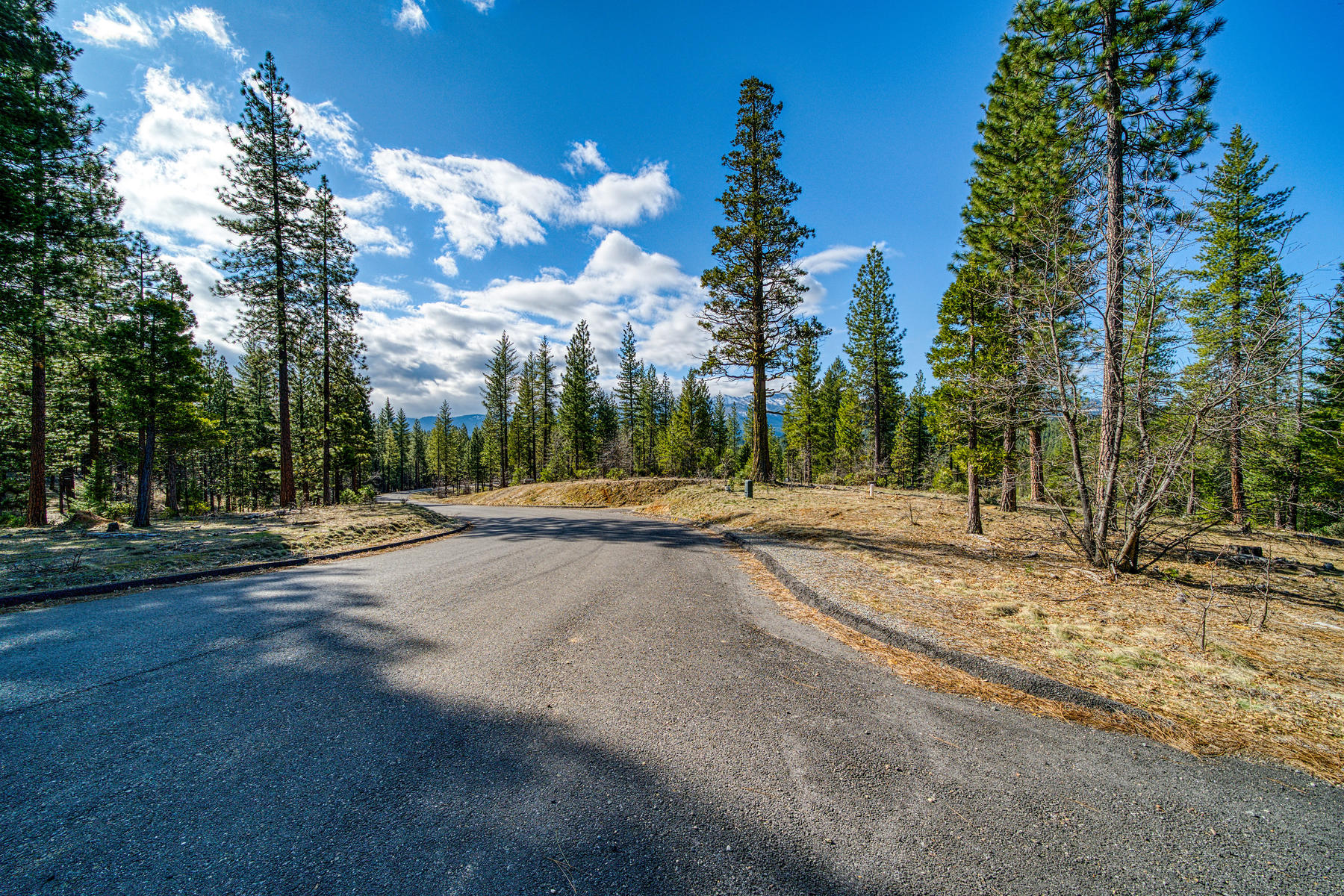 Additional photo for property listing at Build your mountain retreat 350 Liberty Lane Quincy, California 95971 United States