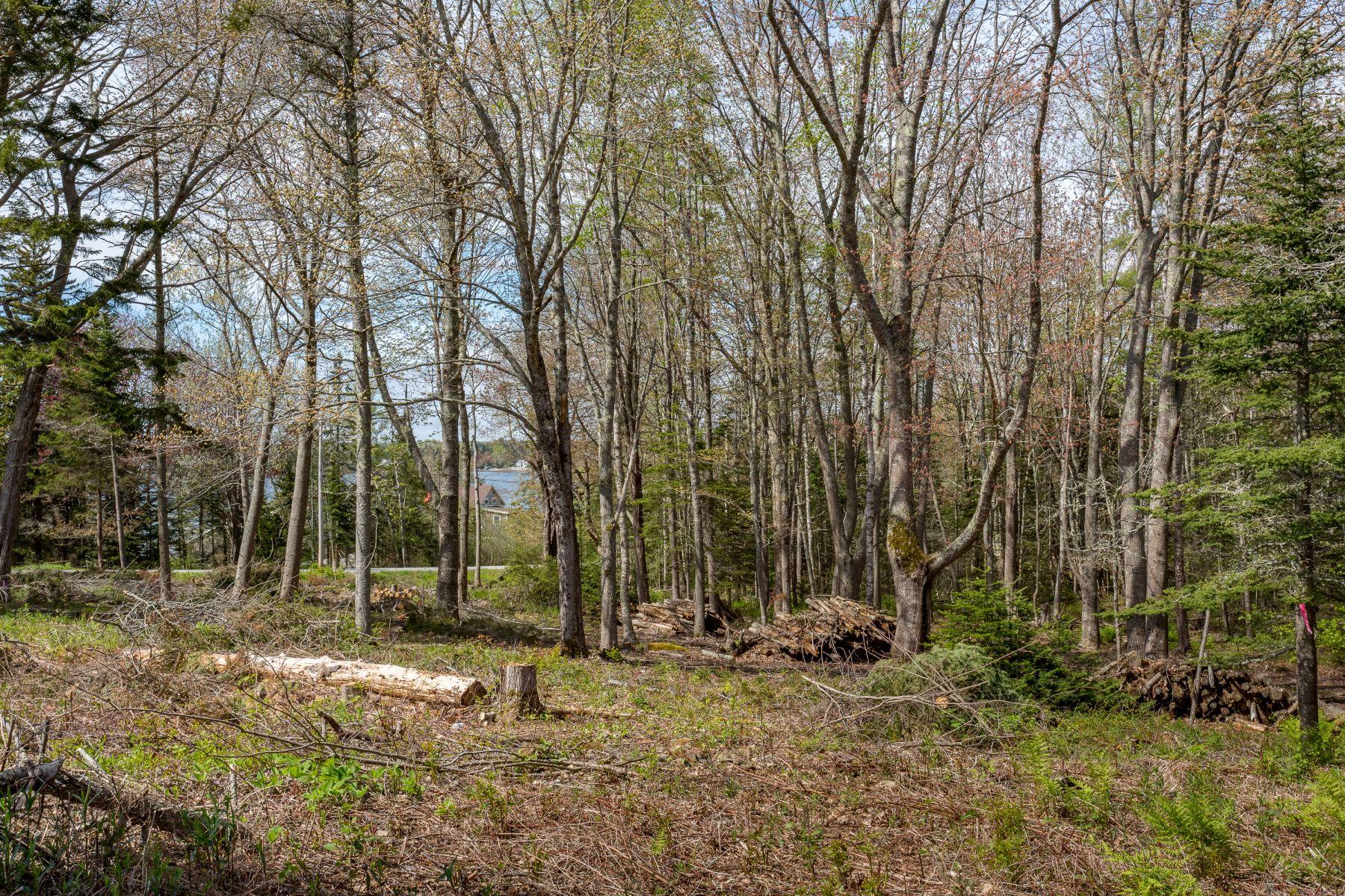 أراضي للـ Sale في Owls Head, Maine 04854 United States