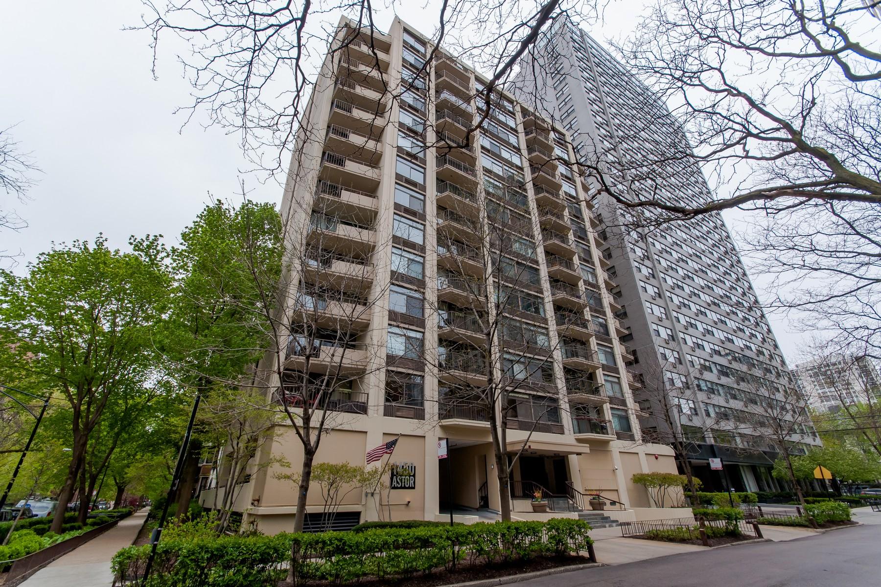 Condomínio para Venda às Gold Coast Treasure 1450 N Astor Street Unit 3B Near North Side, Chicago, Illinois, 60610 Estados Unidos