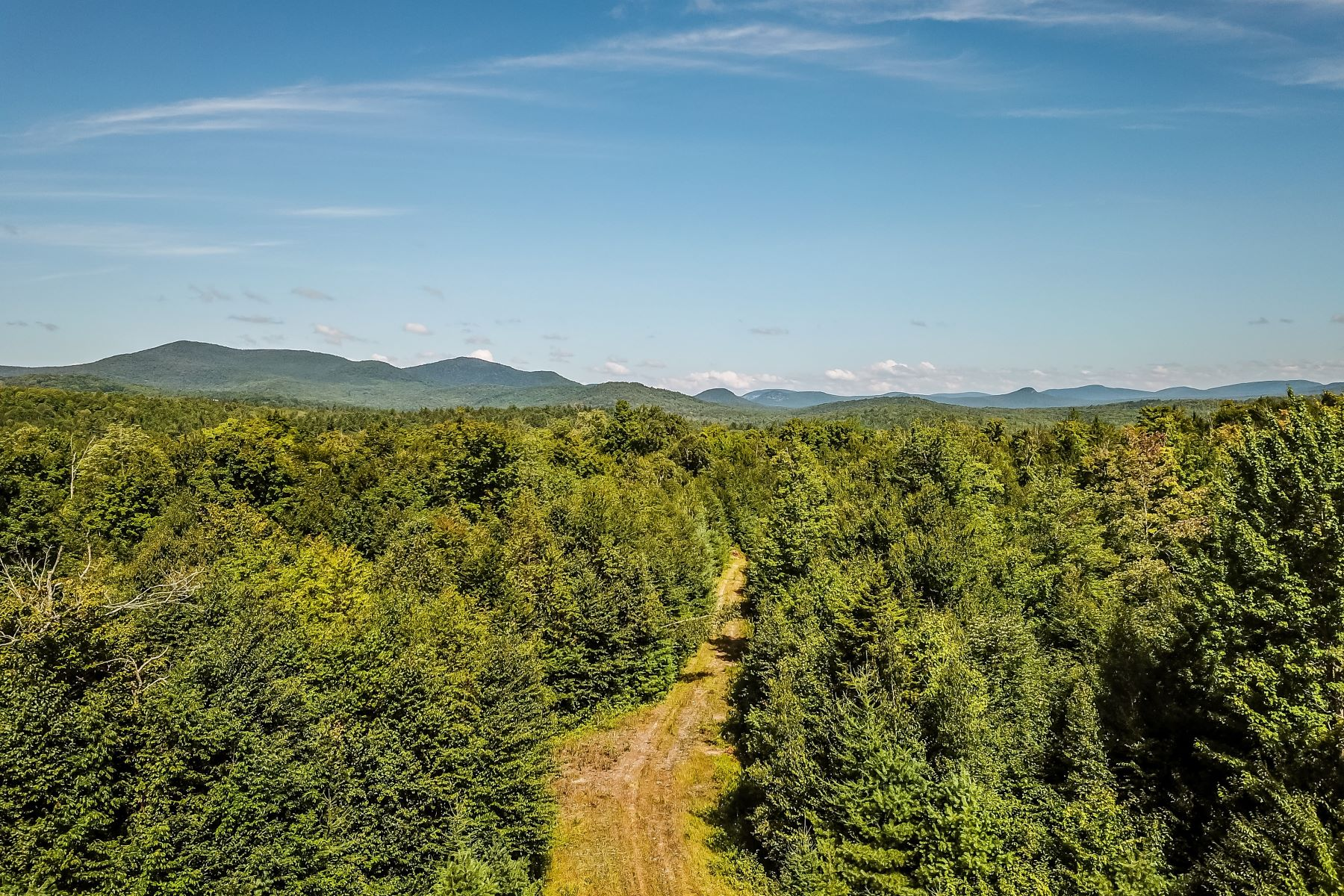 Land for Sale at Large Parcel of Land in Groton 4579 Scott Hwy Groton, Vermont 05046 United States
