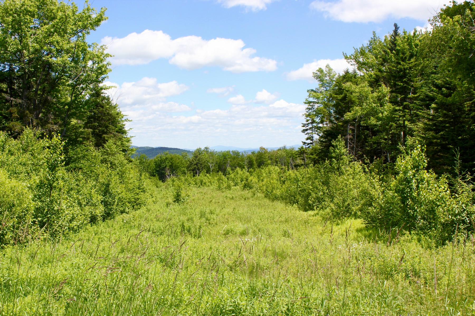 Land for Sale at Long Range Views Hemlock Hill Dr Ludlow, Vermont 05149 United States
