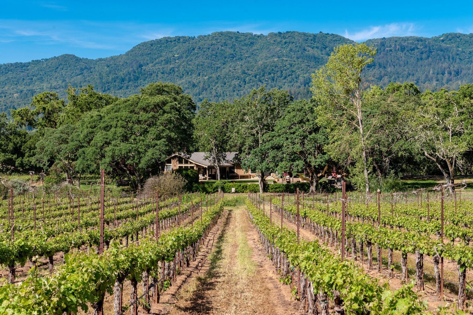 Farm / Ranch / Plantation for Sale at Trestle Glen Vineyards 15083 Trestle Glen Drive Glen Ellen, California 95442 United States