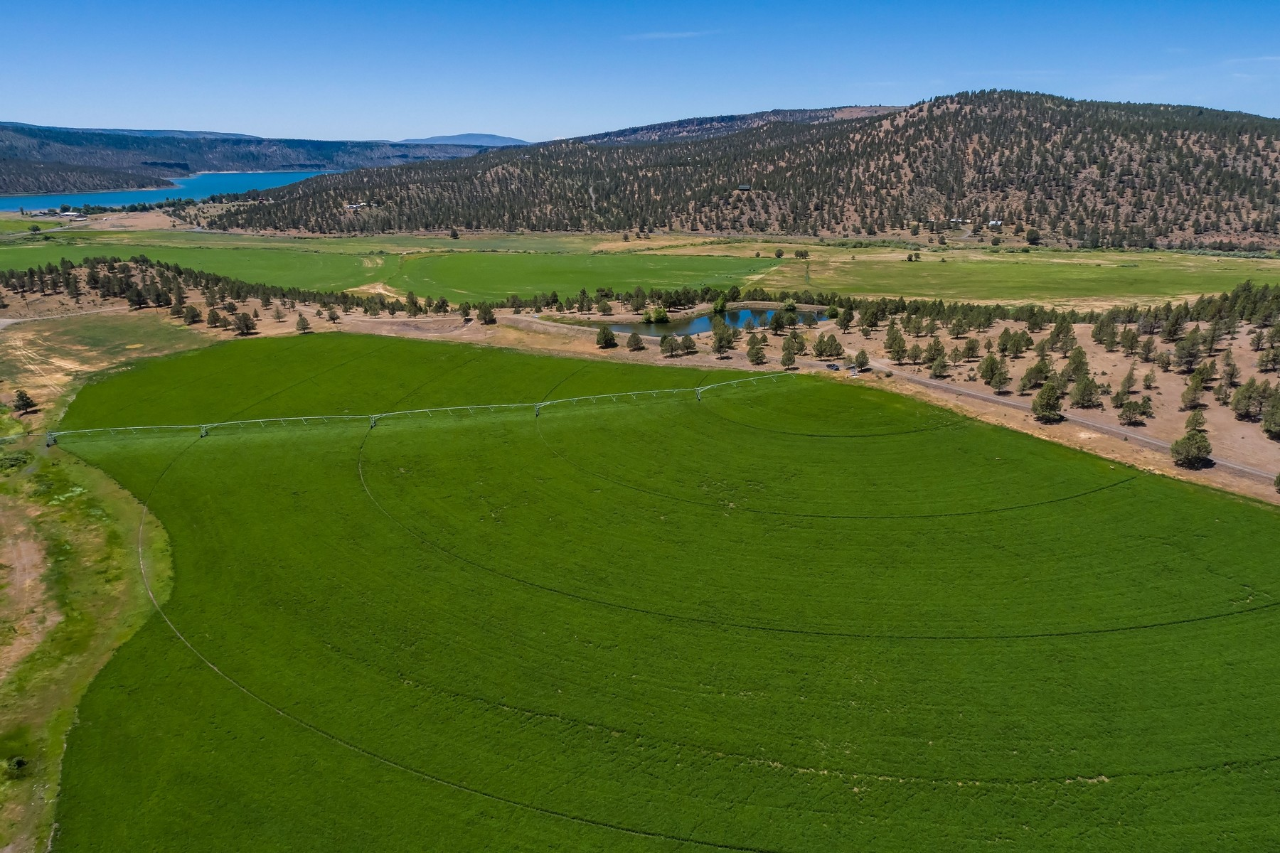Farm / Ranch / Plantation for Active at Polly Creek Ranch -- Prineville, OR 2648 NE Double L Road Prineville, Oregon 97754 United States