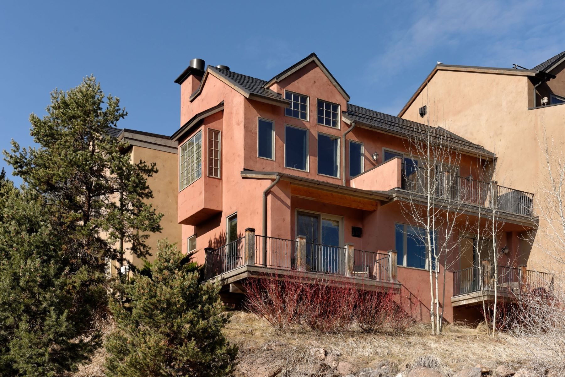 Single Family Home for Sale at The Wilds 206 Wild Spring Lane, Basalt, Colorado, 81621 United States