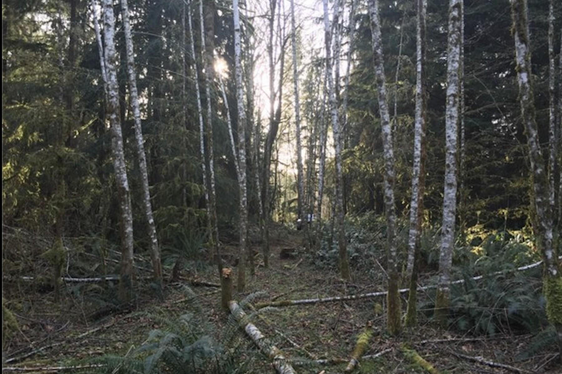 Land for Sale at 26 xxx SE Duthie Rd Issaquah, Washington 98029 United States