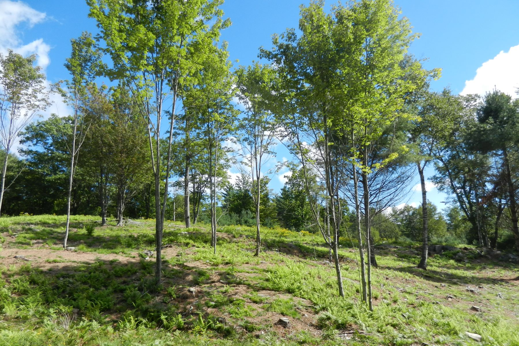 Land for Sale at 00 Meetinghouse Road, Norwich 00 Meetinghouse Rd Norwich, Vermont 05055 United States