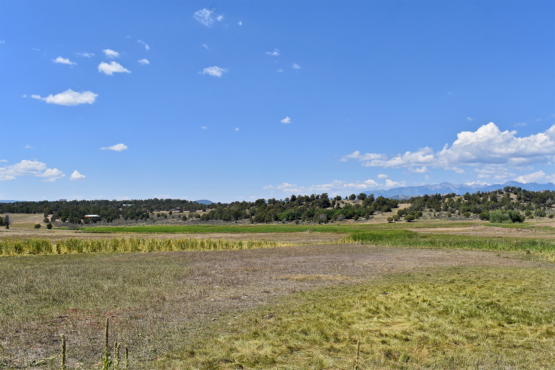 Additional photo for property listing at El Pasadizo Ranch 2645 CR 510 Durango, Colorado 81303 Estados Unidos